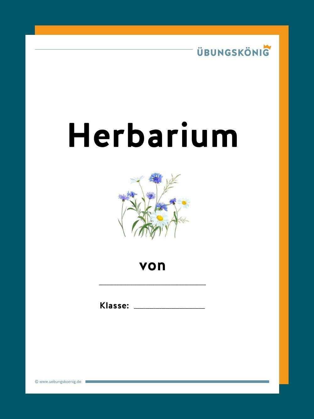 Herbarium In 2020 Herbarium Vorlage Genaues Lesen Biologie