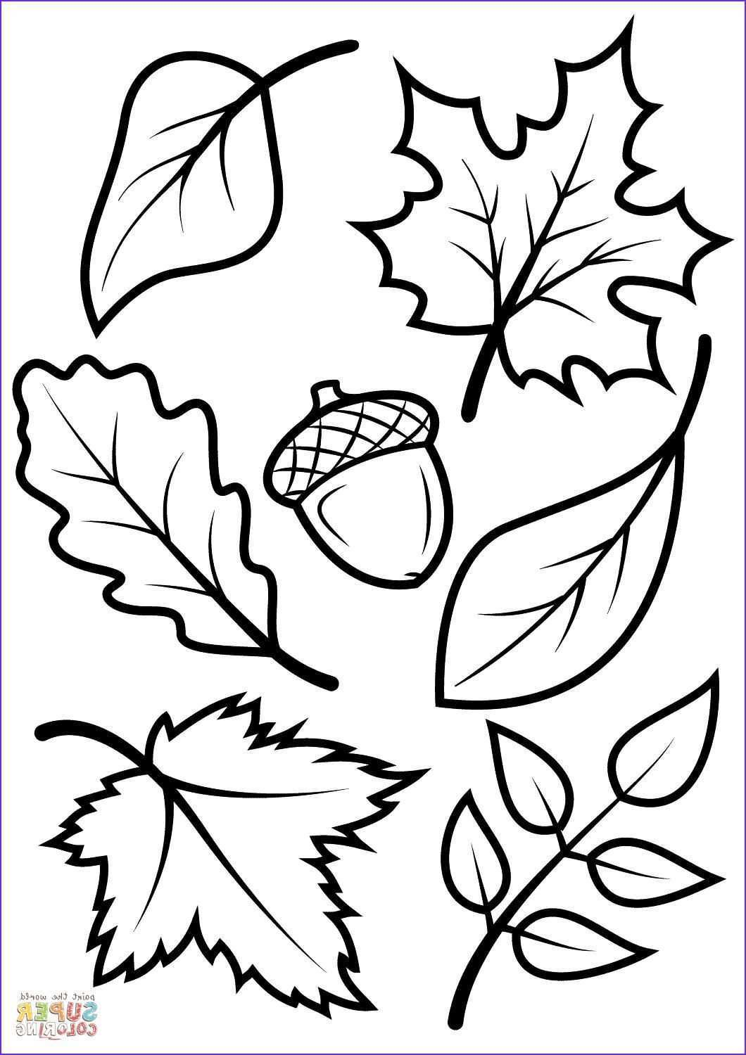 42 Coloring Page Leaves Fensterbilderherbstvorlagen Fine Coloring Page Leaves That You Must Know Blattschablone Fensterbilder Herbst Vorlagen Blatt Schablone
