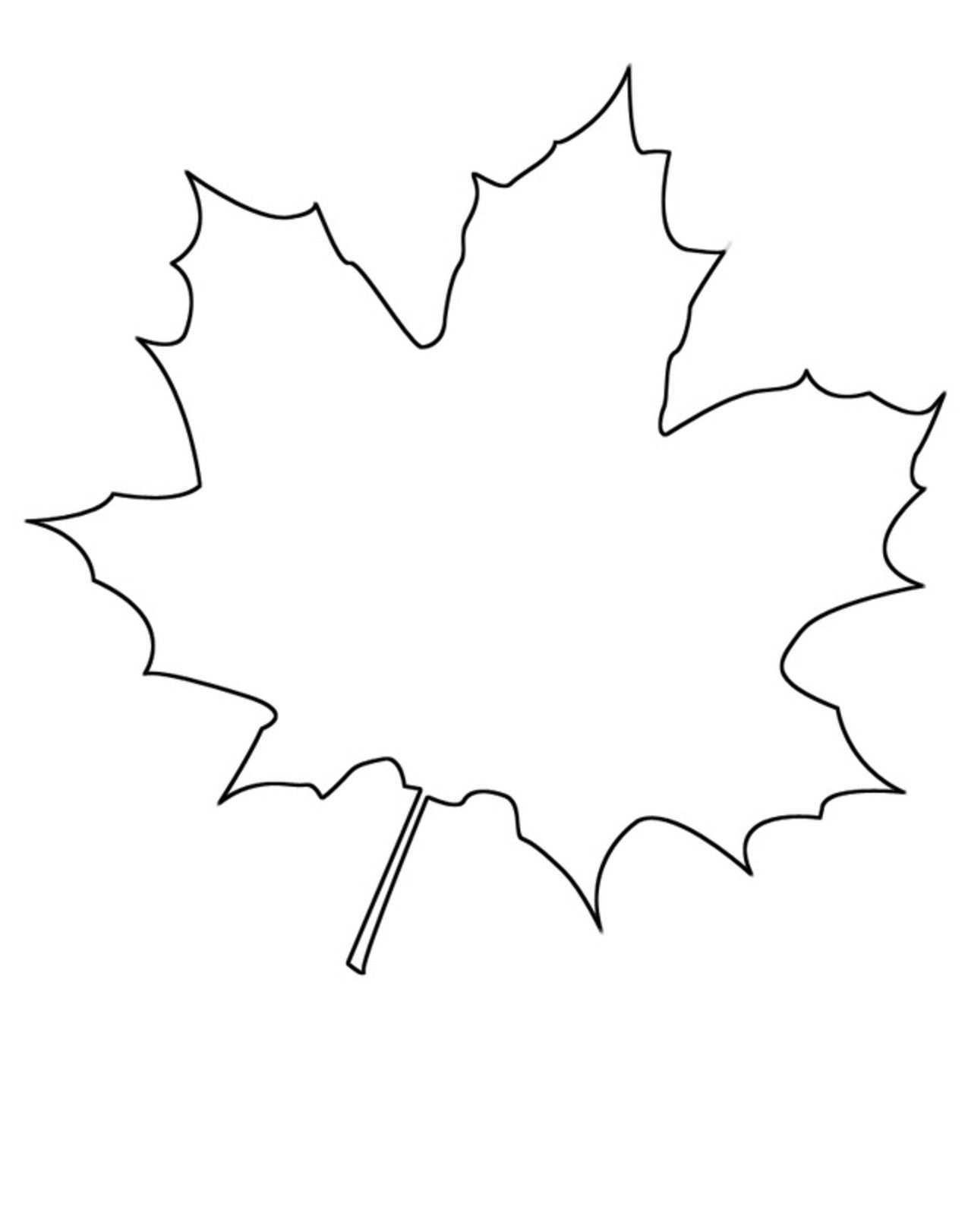 Ahorn Blatt Ausdrucken Und Fur Beliebige Bastelprojekte Verwenden Bastelvorlagen Fensterbilder Herbst Vorlagen Kostenlos Bastelvorlagen Zum Ausdrucken