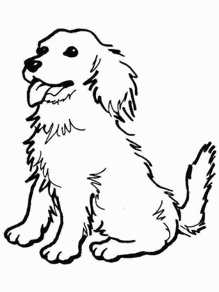 Malvorlagen Kostenlos Ausdrucken Hund Http Kinder Ausmalbilder Co Malvorlagen Kostenlos Ausdrucken Hun In 2020 Ausmalbilder Hunde Malvorlage Hund Ausmalbilder Tiere