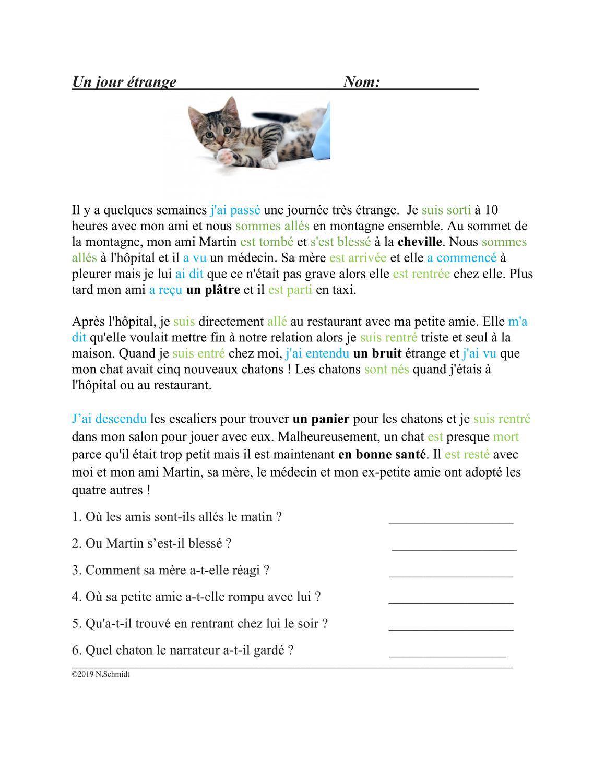 Passe Compose Lecture En Francais Franzosische Lekture Vergangenheitsform Franzosisch Stunde Unterrichtsmaterial