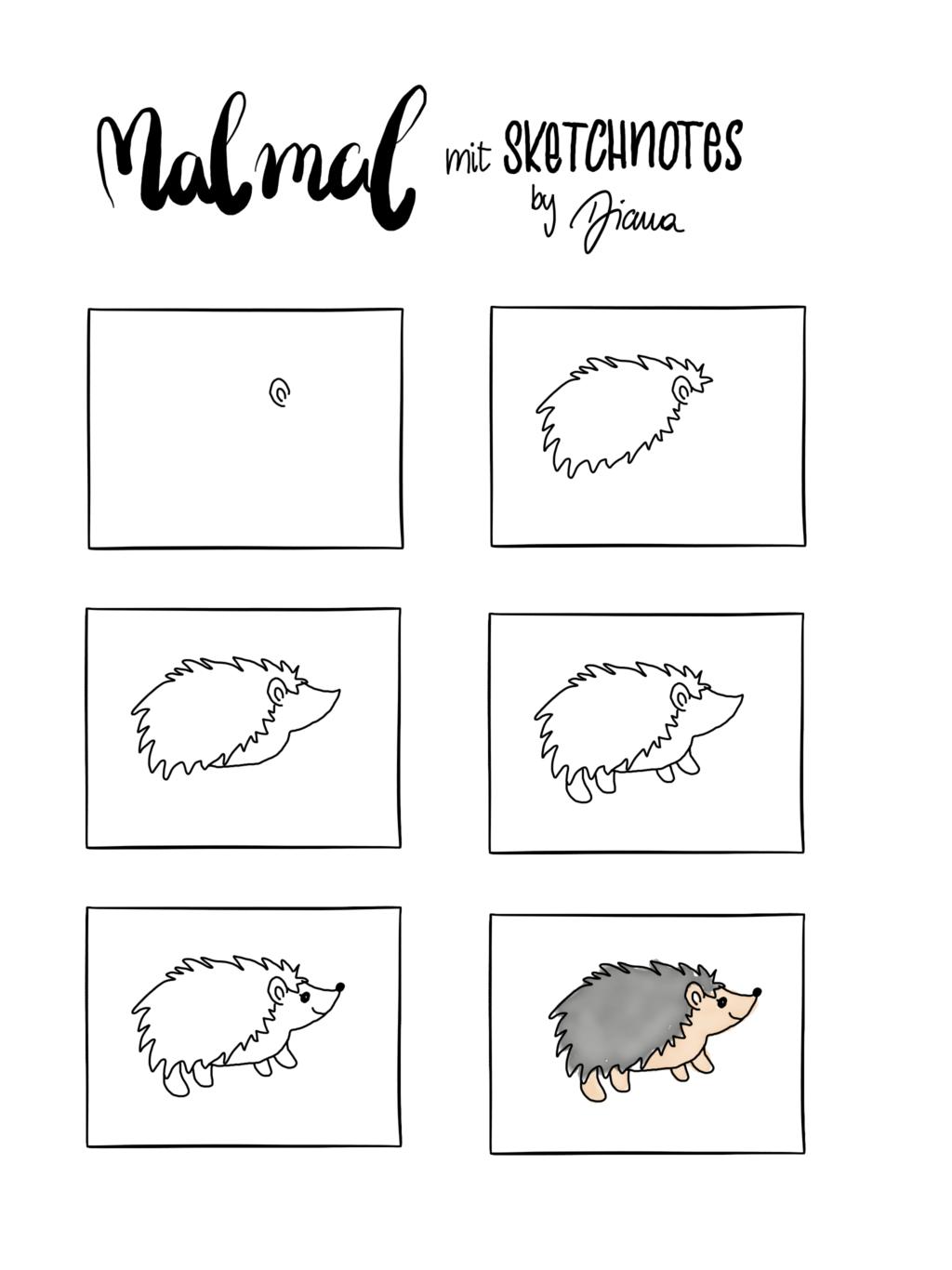 Sketchnotes Anleitung Zum Nachzeichnen Igel Sketchnotes By Diana Nachzeichnen Kritzeleien Skizze Notizen