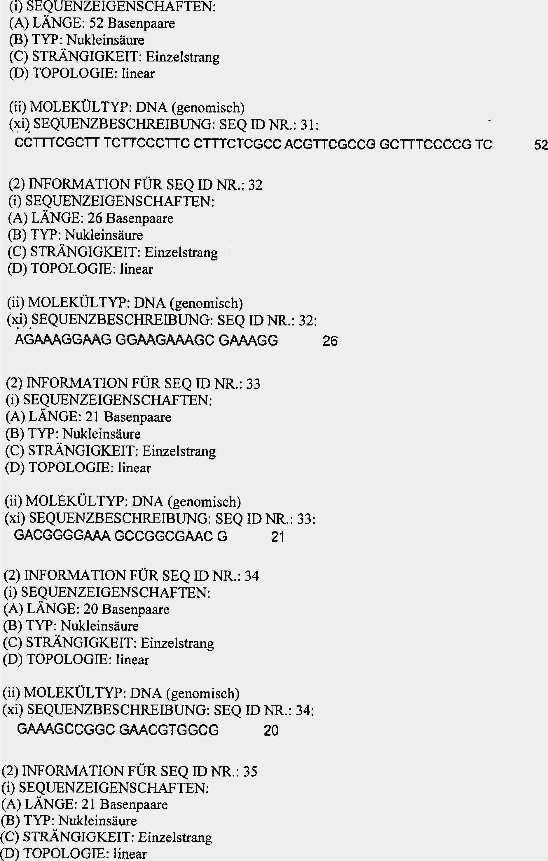 28 Suss Kapazitatsplanung Excel Vorlage Download Modelle In 2020 Excel Vorlage Vorlagen Flyer Vorlage