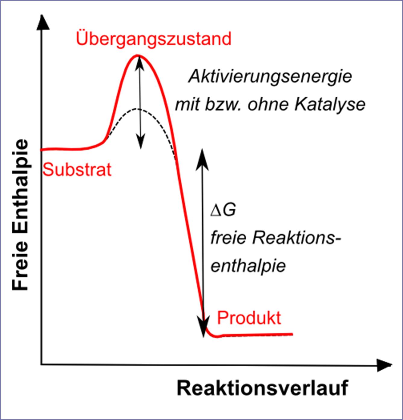 Katalysator Physikalische Chemie Online Kurse