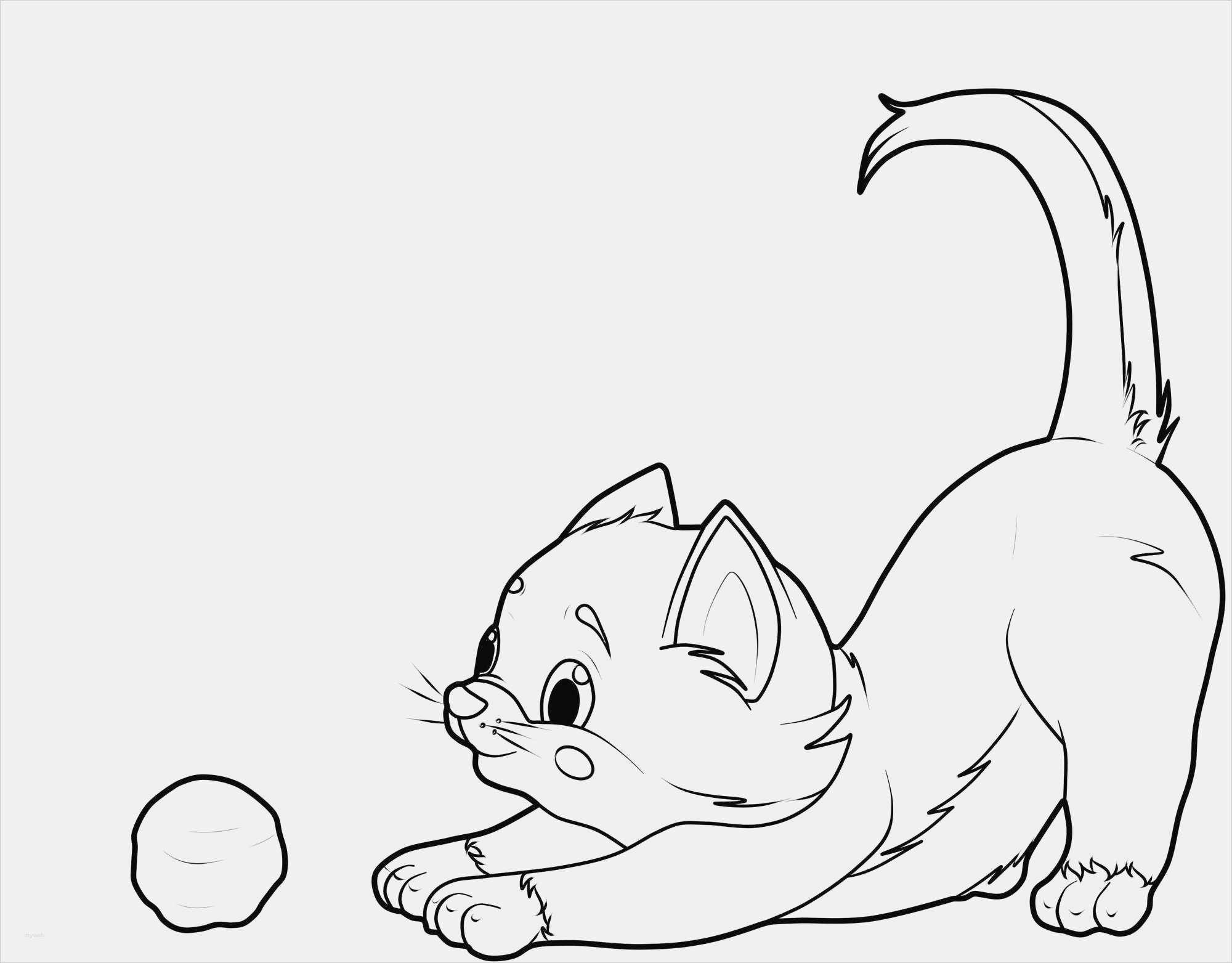 Katzen Malen Vorlagen Wunderbar Kostenlose Malvorlage Katzen Katze Ausmalbilder Katzen Ausmalbilder Tiere Malvorlage Katze