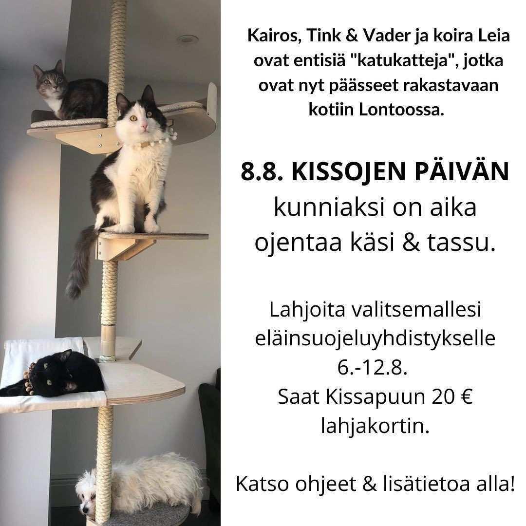 Lahjoita Kissoille I Kissapuu In 2020