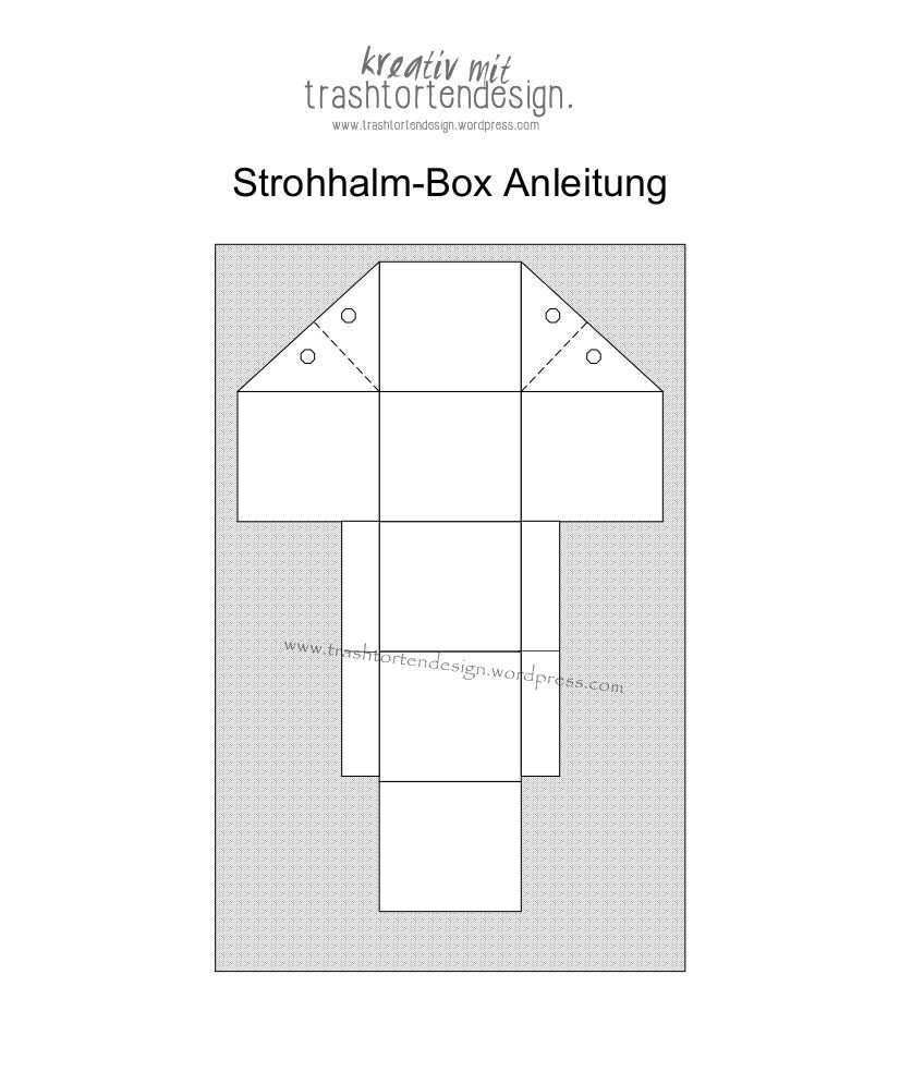 Https Trashtortendesign Files Wordpress Com 2016 03 2016 03 20 Strohhalmbox Box Anleitung 2 Jpg Box Basteln Anleitungen Box