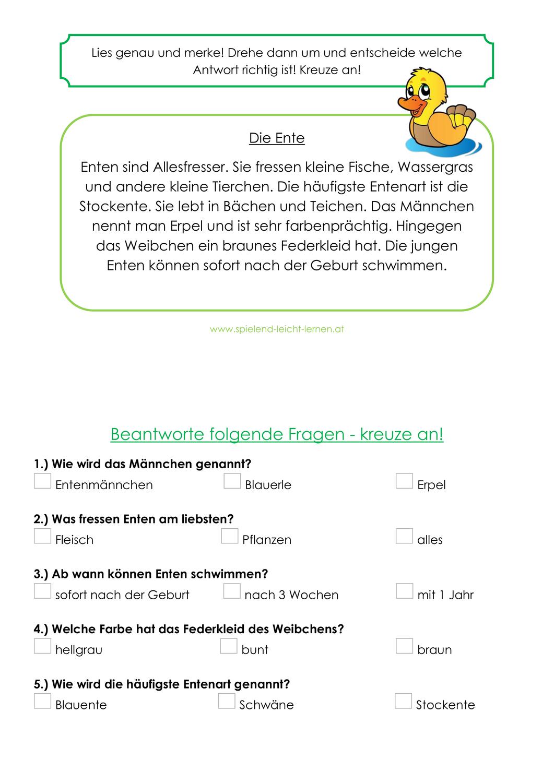 Sachtexte Bauernhoftiere Multiplechoice Korr Kinder Lesen Unterrichtsmaterial Sachen
