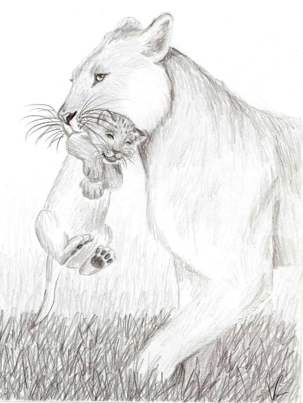 Lowin Mit Kind Bleistiftzeichnung Lowen Zeichnung Lowen Malen Bleistiftzeichnung