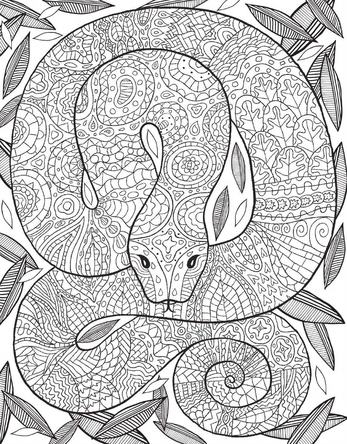 Pin Auf Animal Coloring Pages For Adults