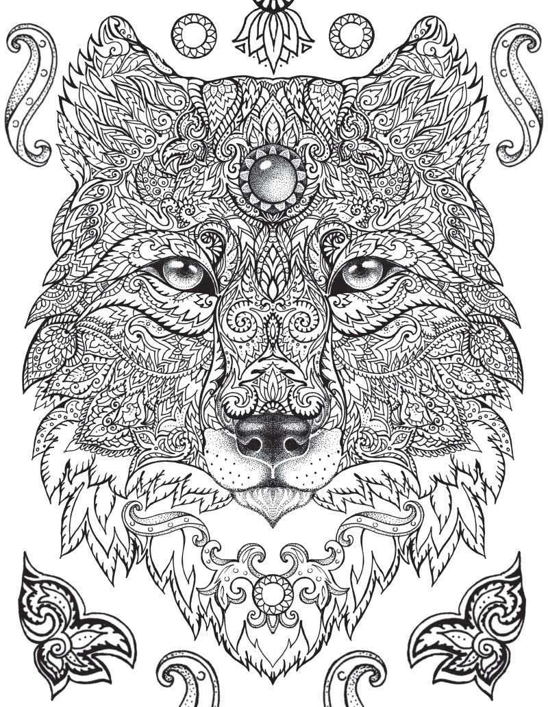 Free Coloring Page Download Blog Silverdolphi Animal Coloring Pages Animal Coloring Books Jungle Coloring Pages