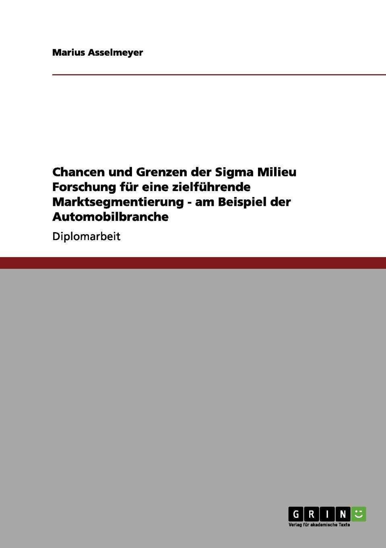 Chancen Und Grenzen Der Sigma Milieu Forschung Fur Eine Zielfuhrende Asselmeyer Marius Amazon De Bucher