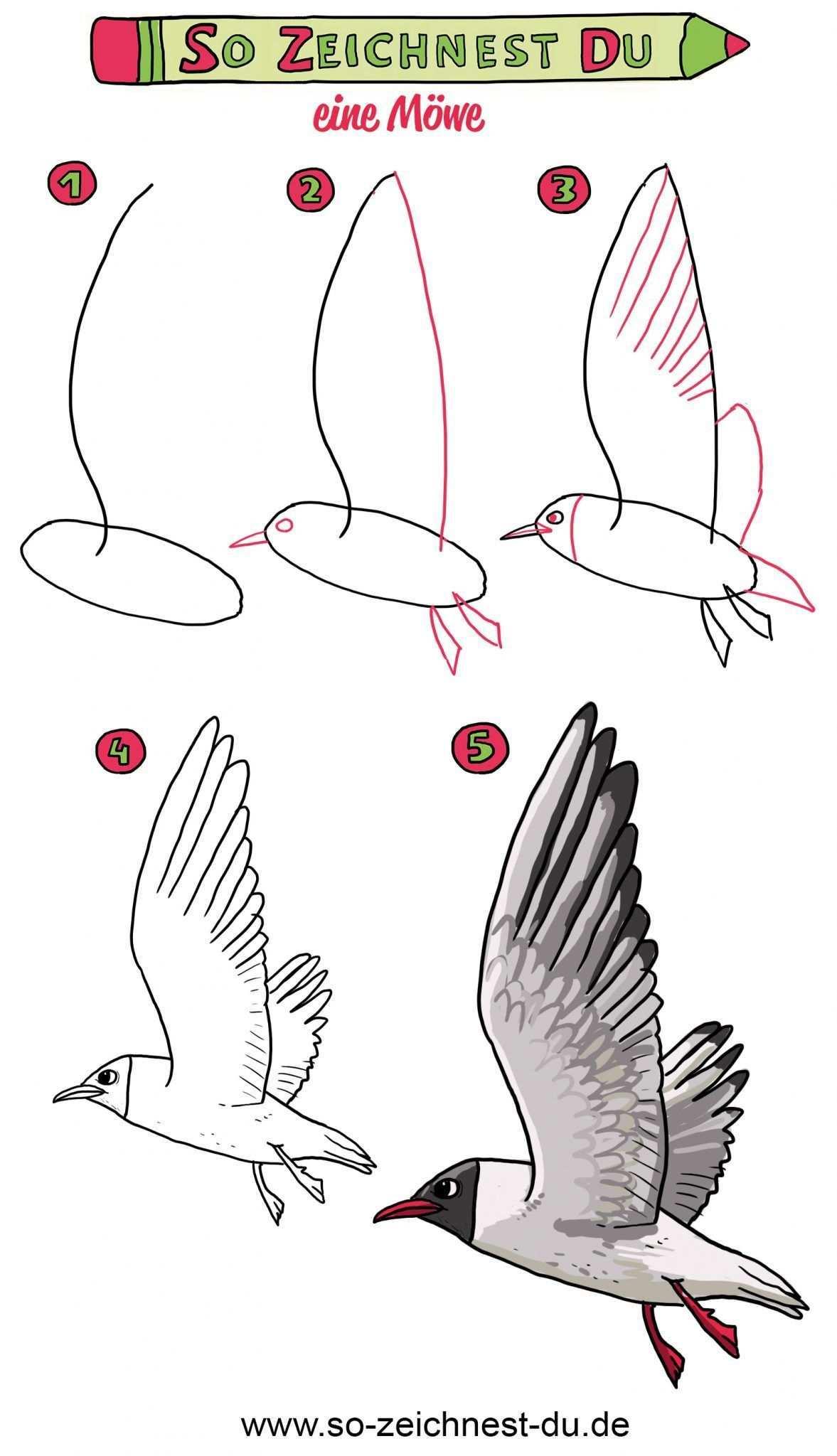 So Zeichnest Du Eine Mowe Zeichnen Lernen Einfache Sachen Zum Zeichnen Vogel Zeichnen
