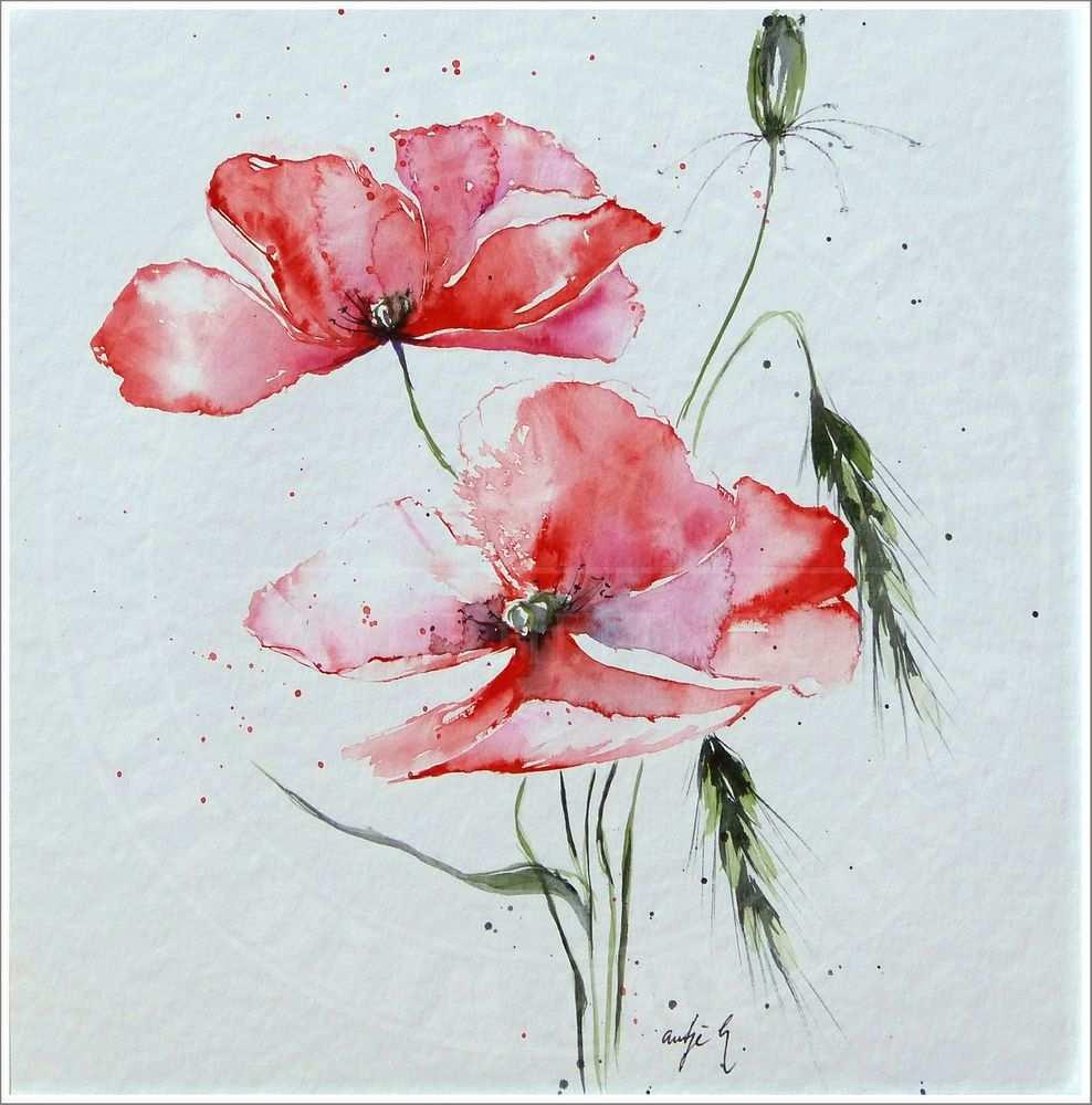 Antje Hettner Bild Original Kunst Aquarell 30x30 Mohn Blumen Watercolor Neu Blumen Aquarell Aquarell Blumen Aquarell
