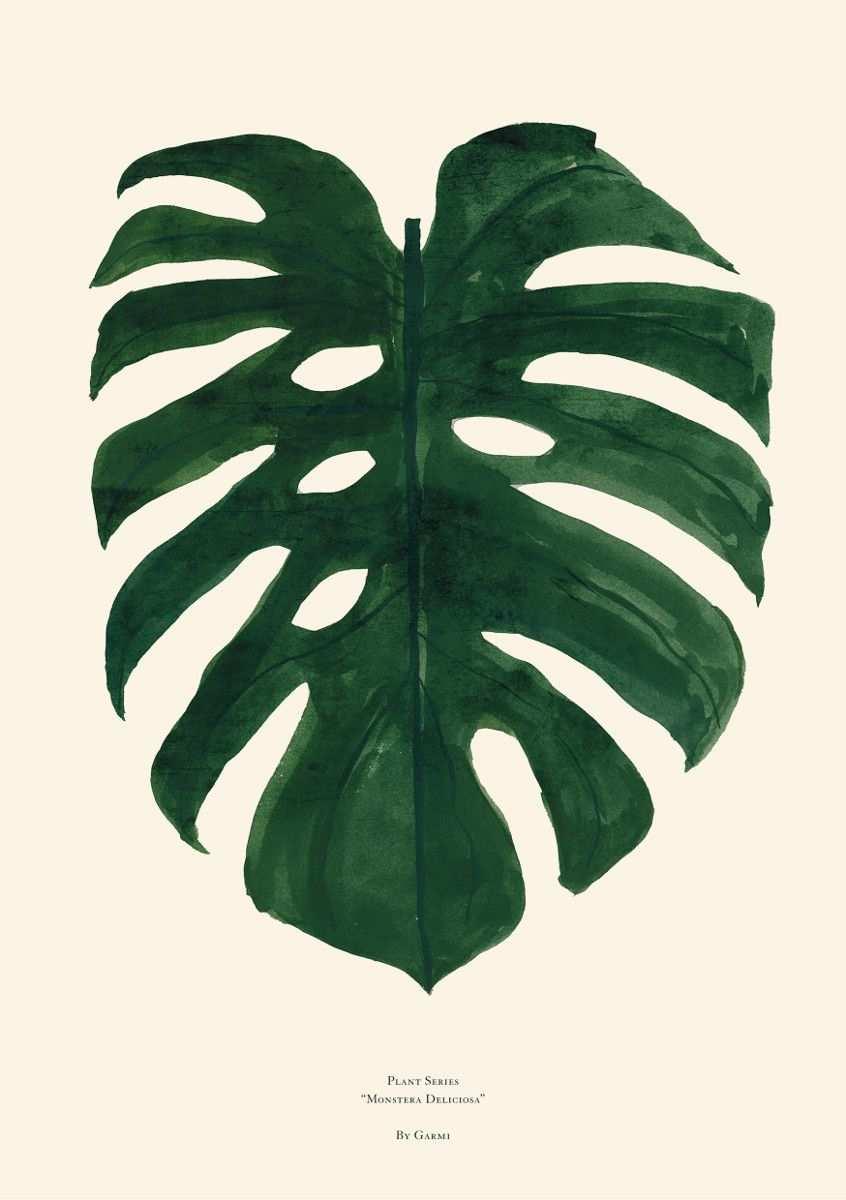 Pin Von Ruth Dias Auf Plantas E Flores Blumenbilder Bilder Plakat