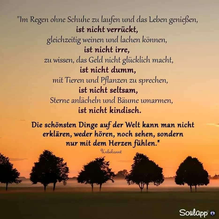 Genauso Wie Unsere Liebe Zueinander Stimmt S Daizo Lebensweisheiten Spruche Spruche Nachdenkliche Spruche