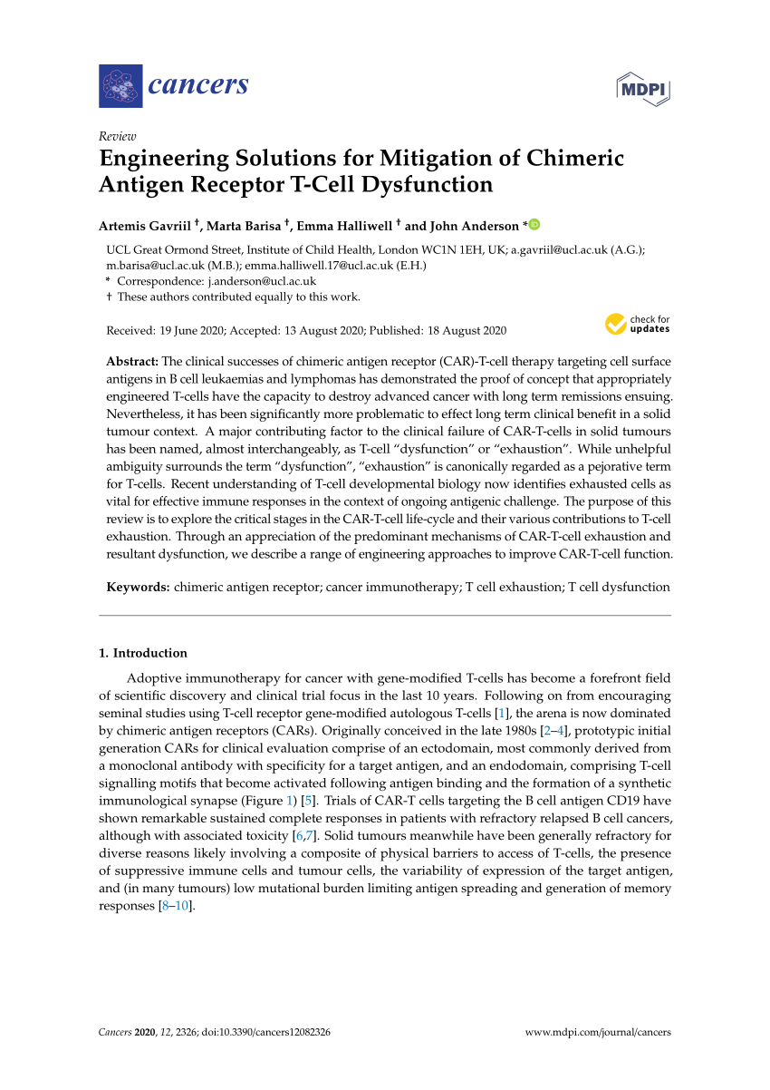 Pdf Engineering Solutions For Mitigation Of Chimeric Antigen Receptor T Cell Dysfunction
