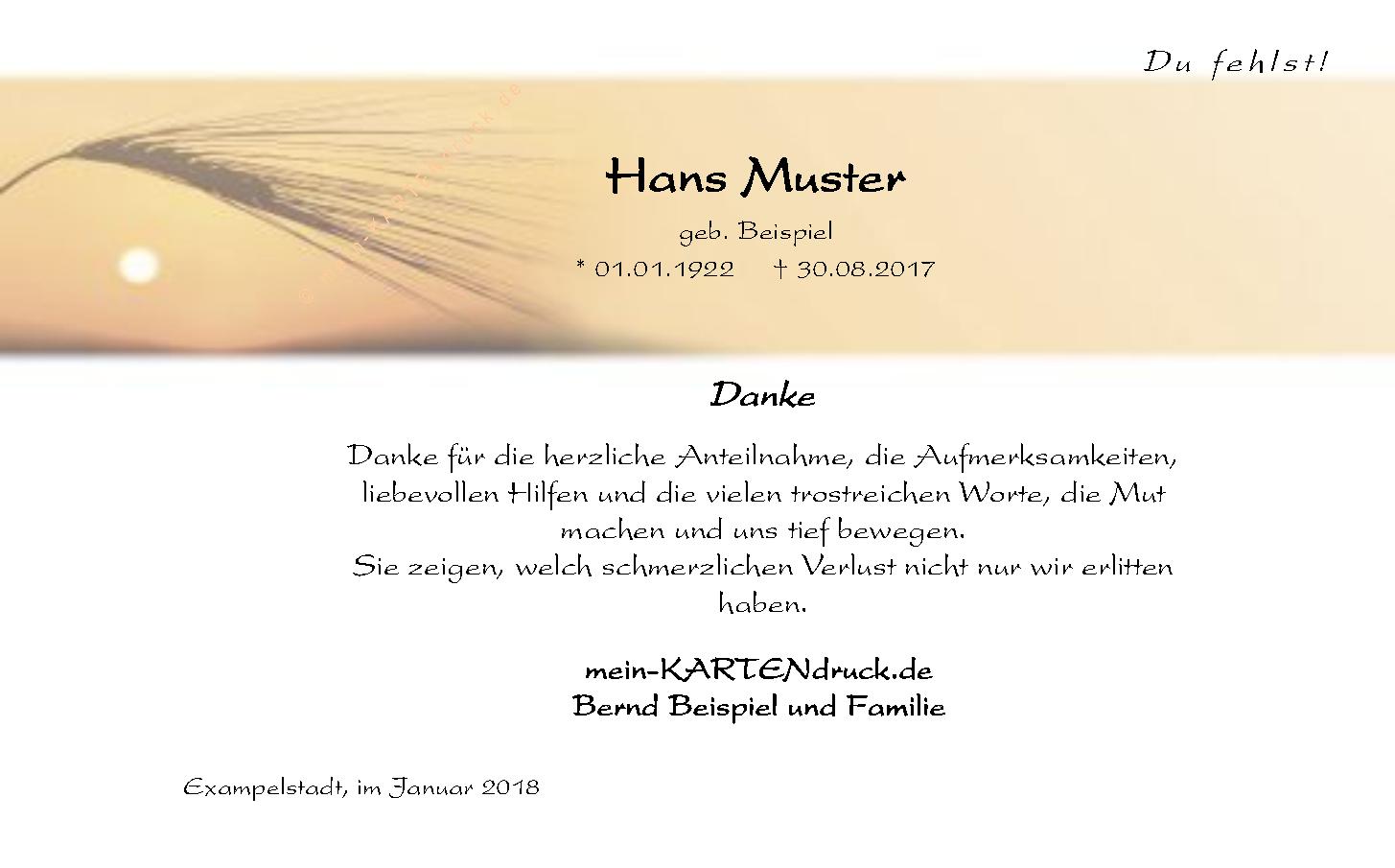 Schone Moderne Danksagungskarte Zur Trauer Ahre Im Sonnenlicht Danke Sagen Trauerkarten Danksagung Trauer