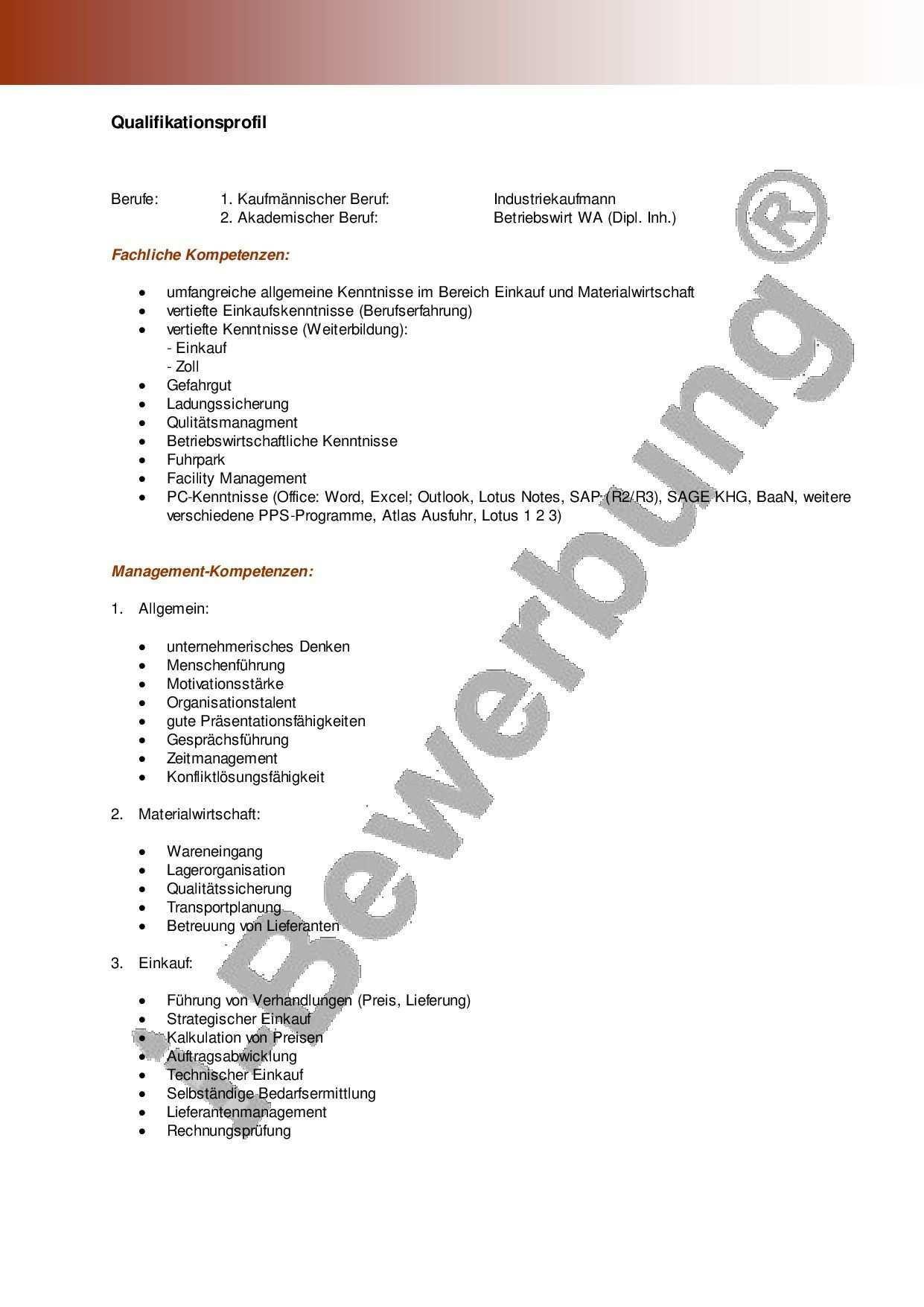 Qualifikationsprofil Zur Initiativbewerbung Vorlage Vorlagen Lebenslauf Bewerbung Lebenslauf