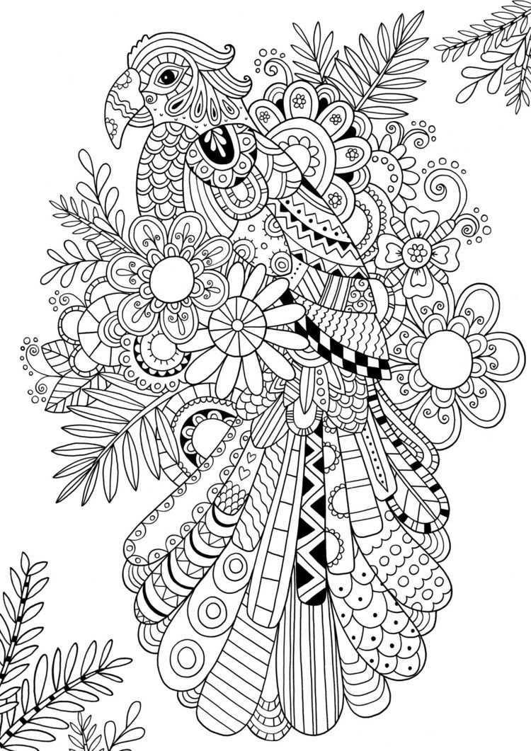 Tangeln Sie Einen Papagei Ausmalbilder Vorlagen Zum Ausmalen Mandala Zum Ausdrucken