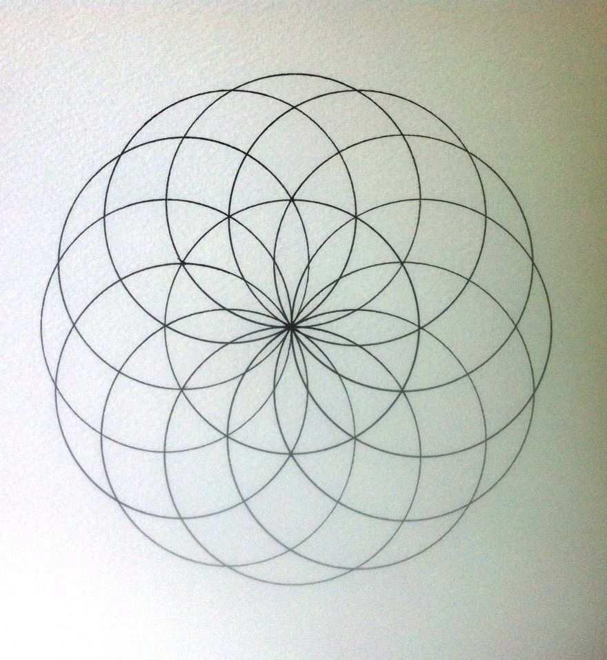 Sacred Geometry How To Draw Torus Geometric Mandala Geometry Art Sacred Geometry