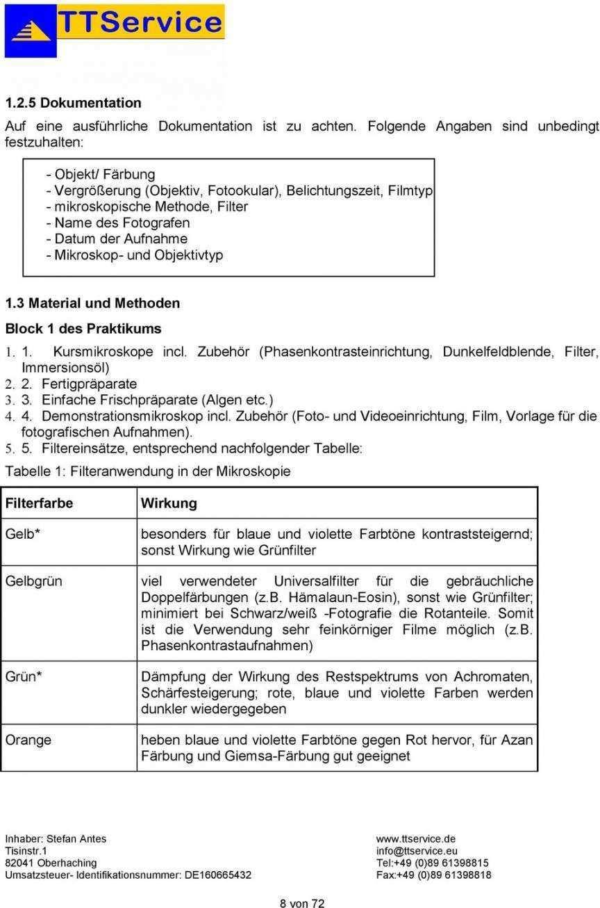 Vorlage Mikroskopische Zeichnung Vorlagen Flugblatt Design Vorlagen Word