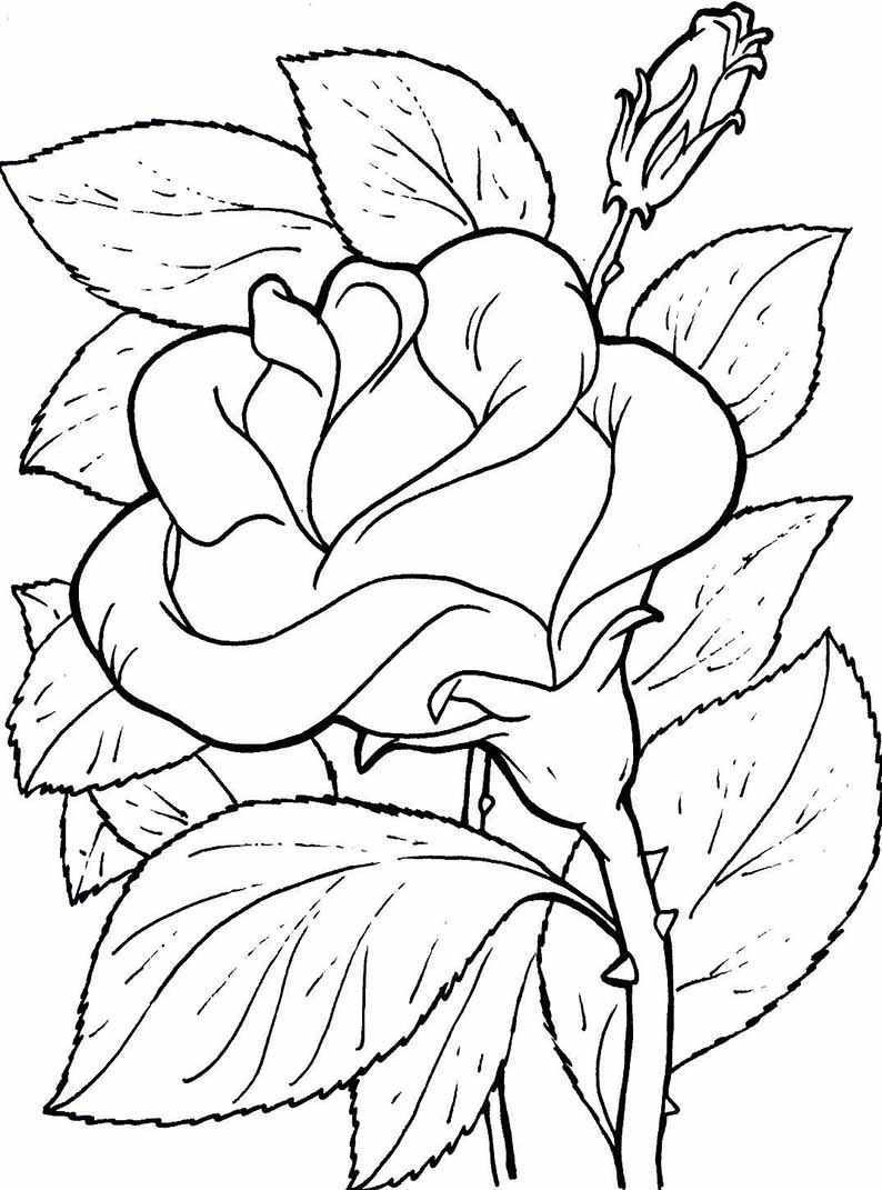Blumen Ausmalbilder 06 Blumen Ausmalbilder Malvorlagen Blumen Ausmalen