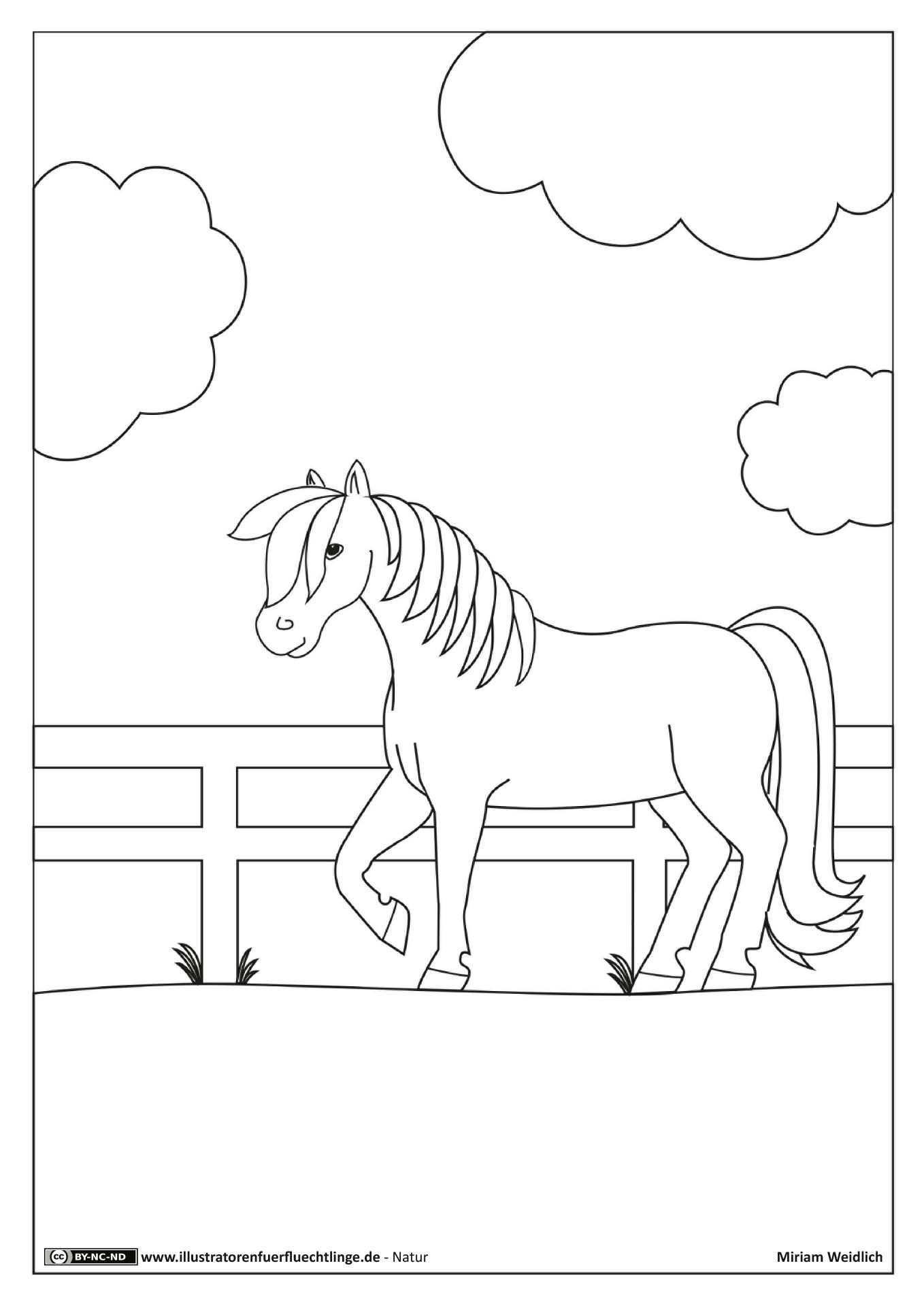 Natur Pferd Koppel Weidlich Ausmalbilder Tiere Pferd Ausmalbilder