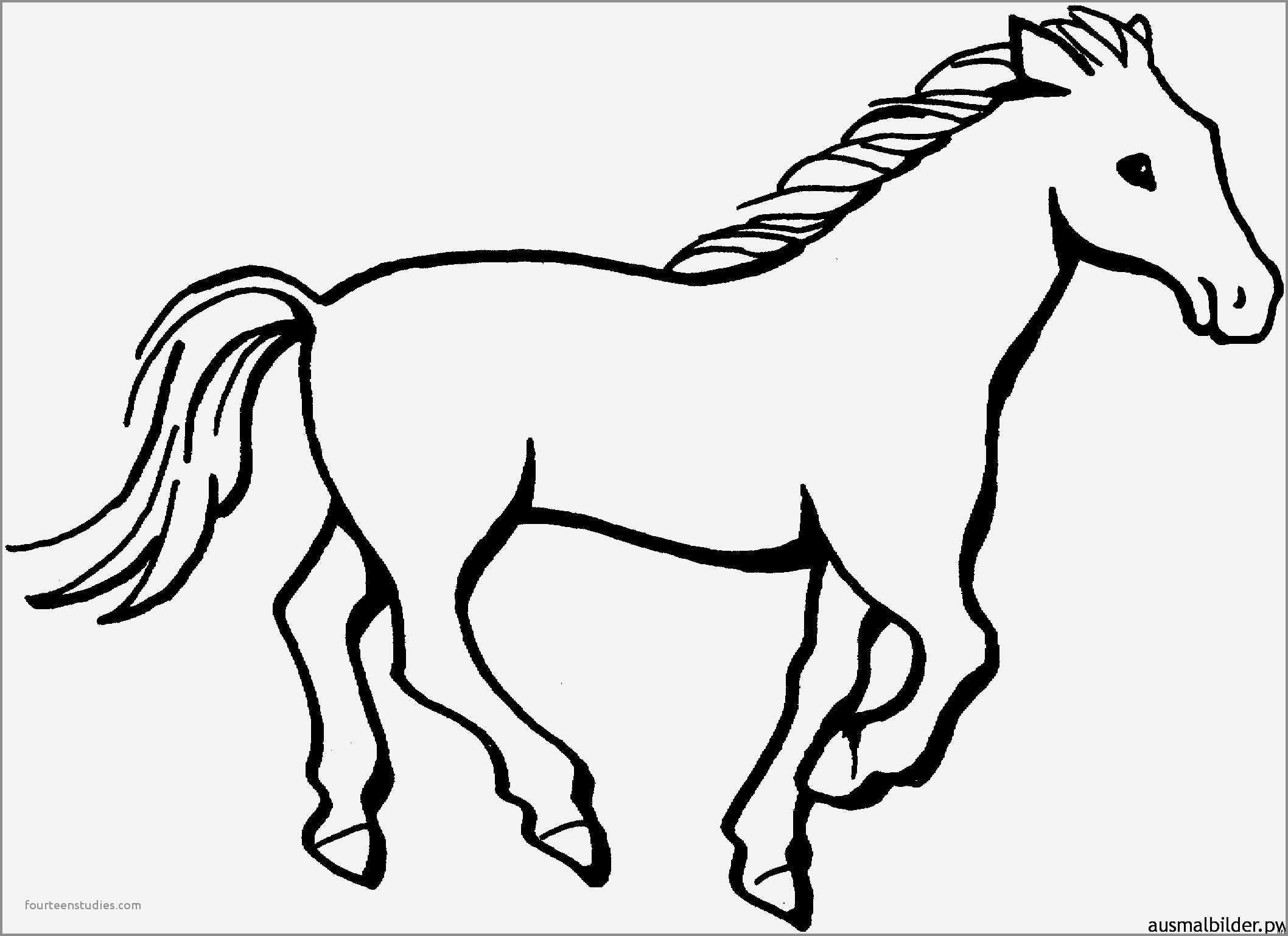 Pferde Ausmalbilder Ausmalbilder Pferde Ausmalbilder Pferde Malvorlagen Pferde Ausmalbilder Tiere