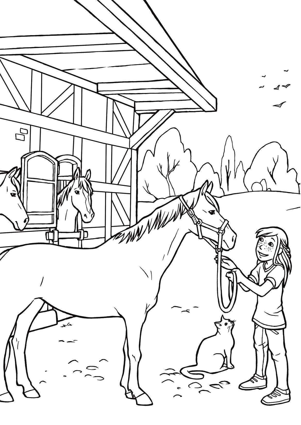 55 Einzigartig Kostenlose Ausmalbilder Pferde Zum Ausdrucken Ausmalbilder Pferde Zum Ausdrucken Ausmalbilder Pferde Malvorlagen Pferde