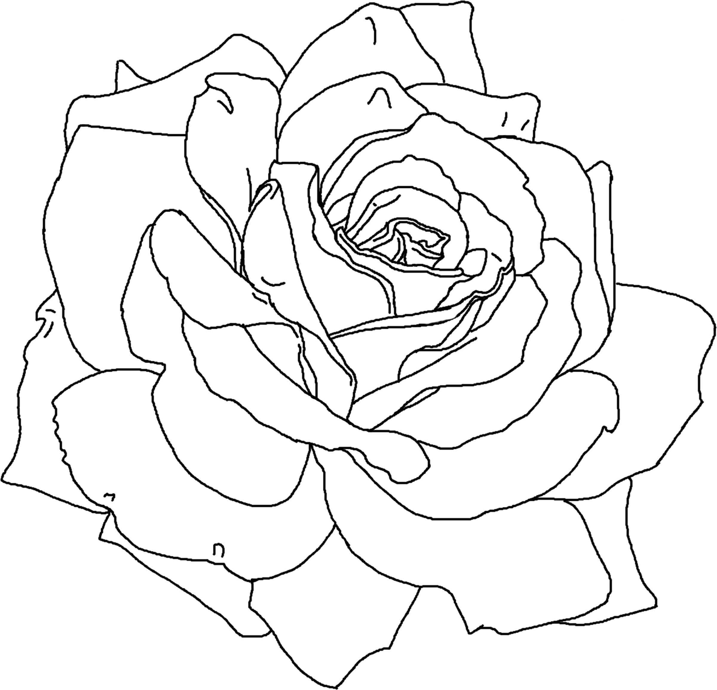 Rose Flower Coloring Page Printable Flower Coloring Pages Rose Coloring Pages Flower Coloring Pages