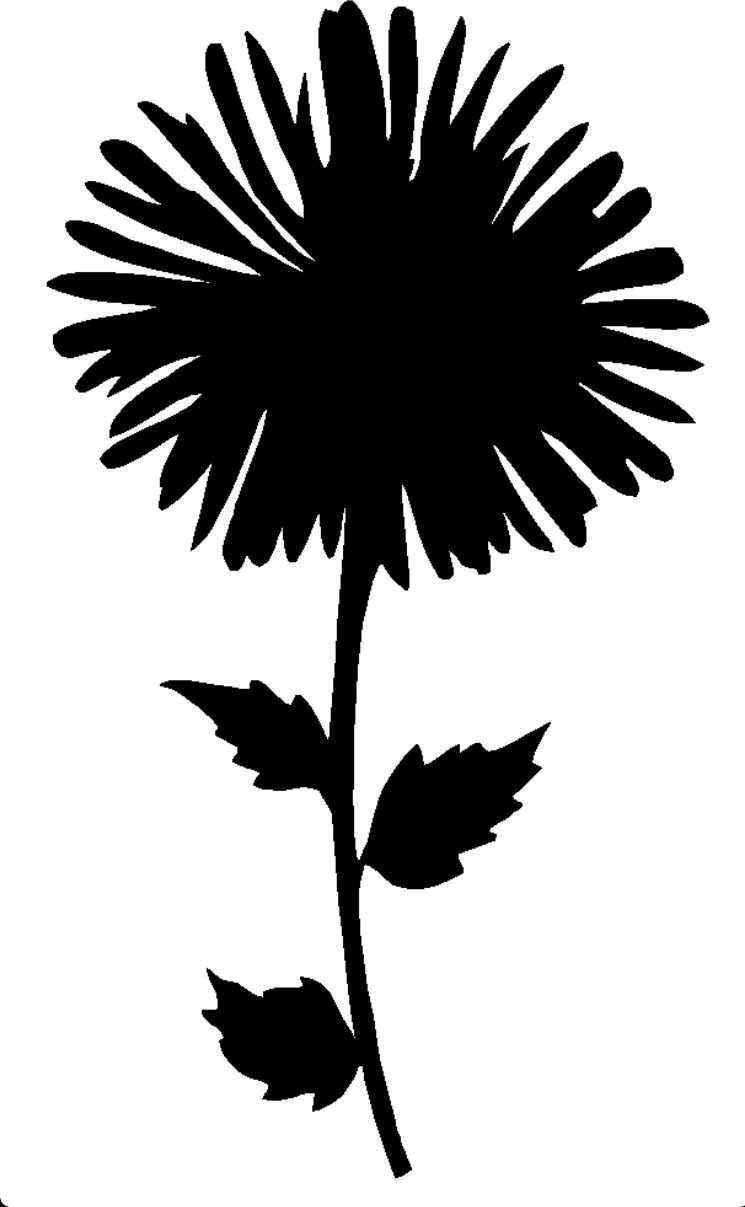Pin By Erika On Coloring Flower Silhouette Silhouette Stencil Silhouette Art