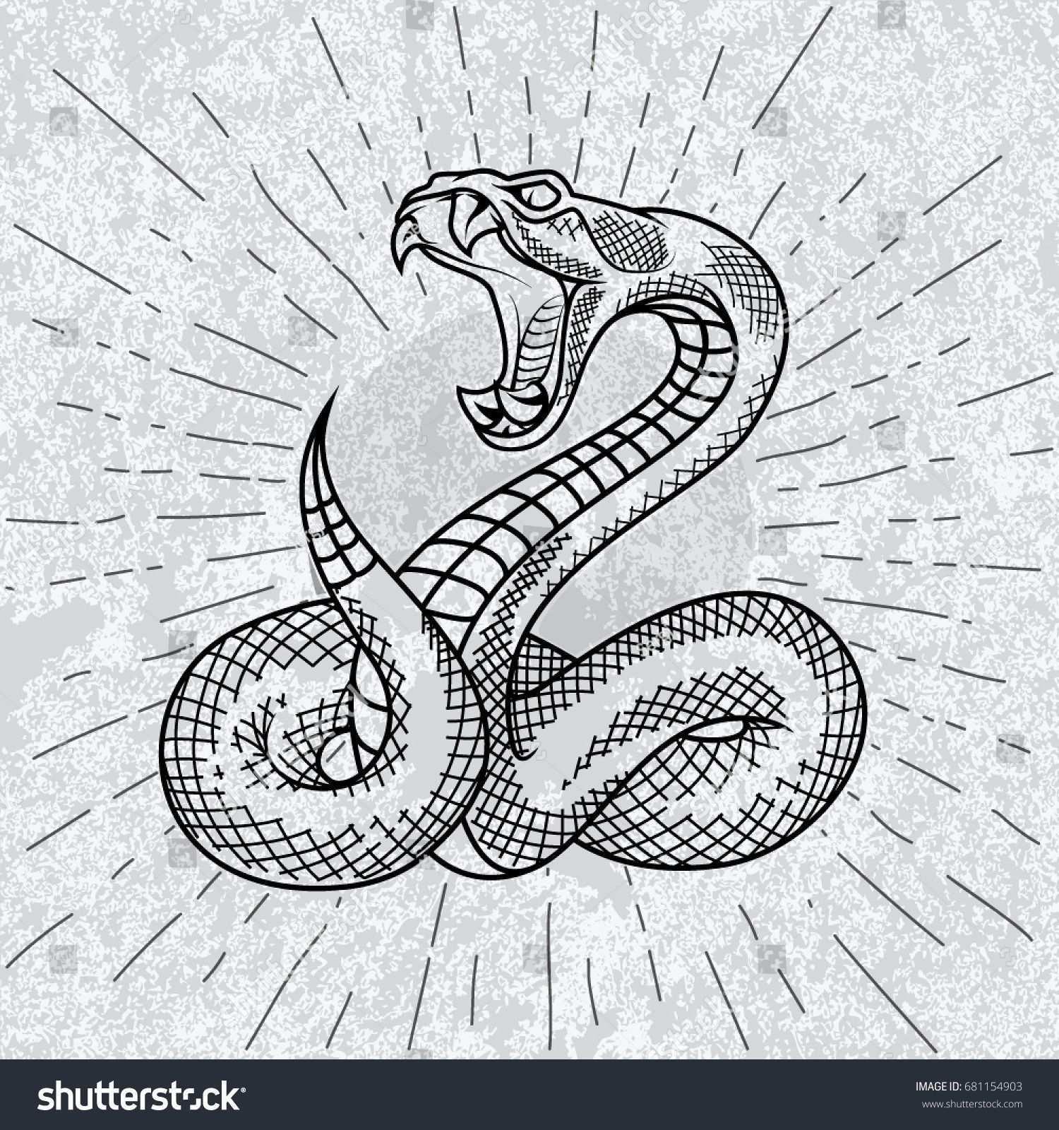 Viper Snake Hand Drawn Illustration In Outline Technique With Star Rays And Grunge Background Schlange Tattoo Schlange Zeichnung Schlange Kunst