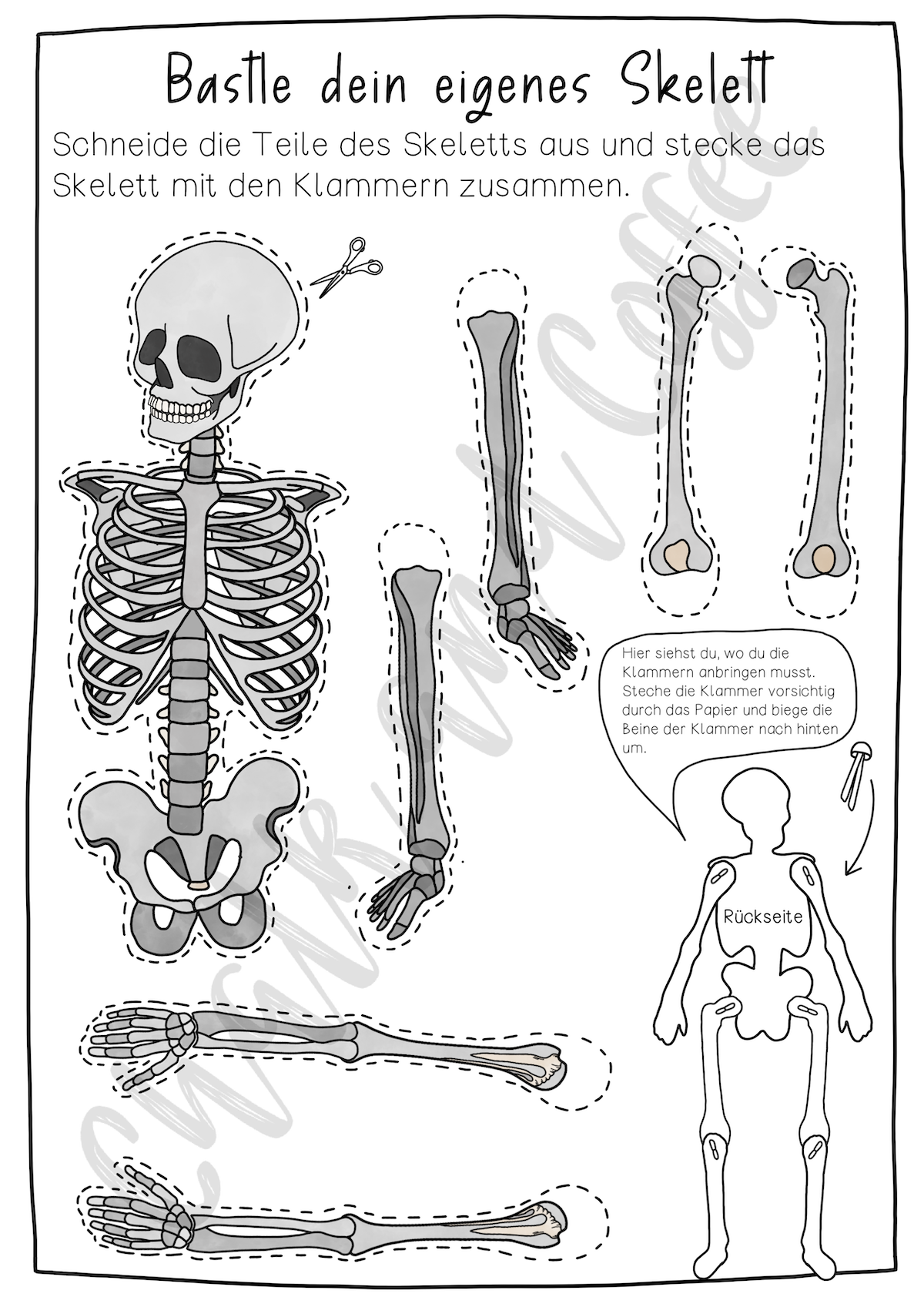 skelett basteln vorlage