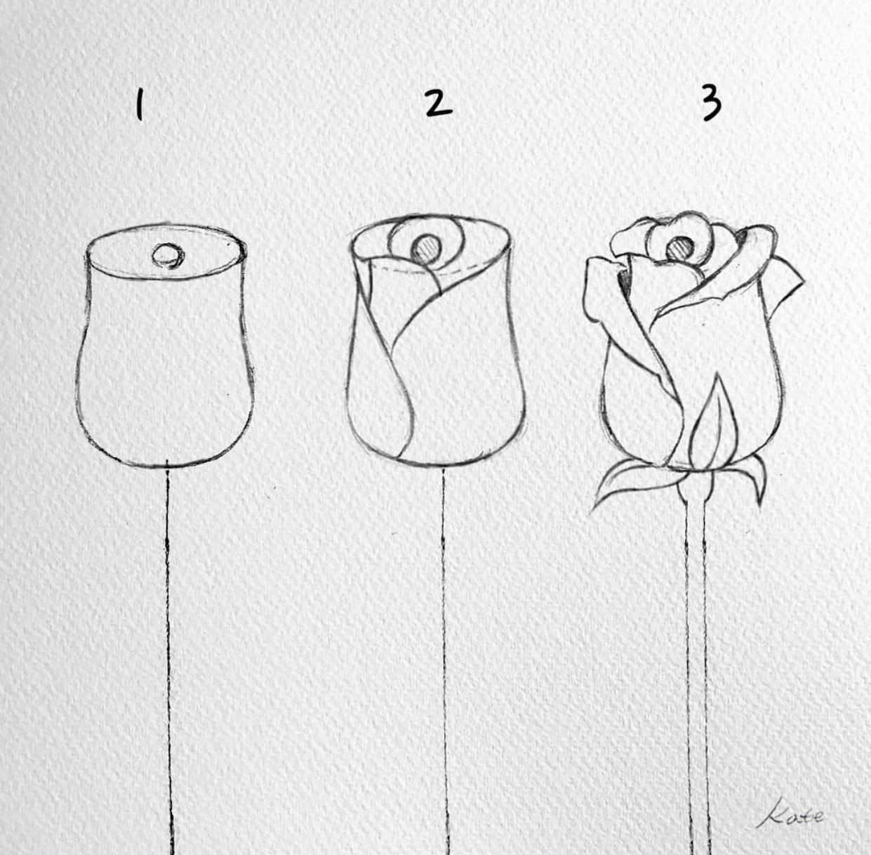 ميلورا On Twitter Blumen Zeichnen Zeichnung Zeichnen Fur Anfanger