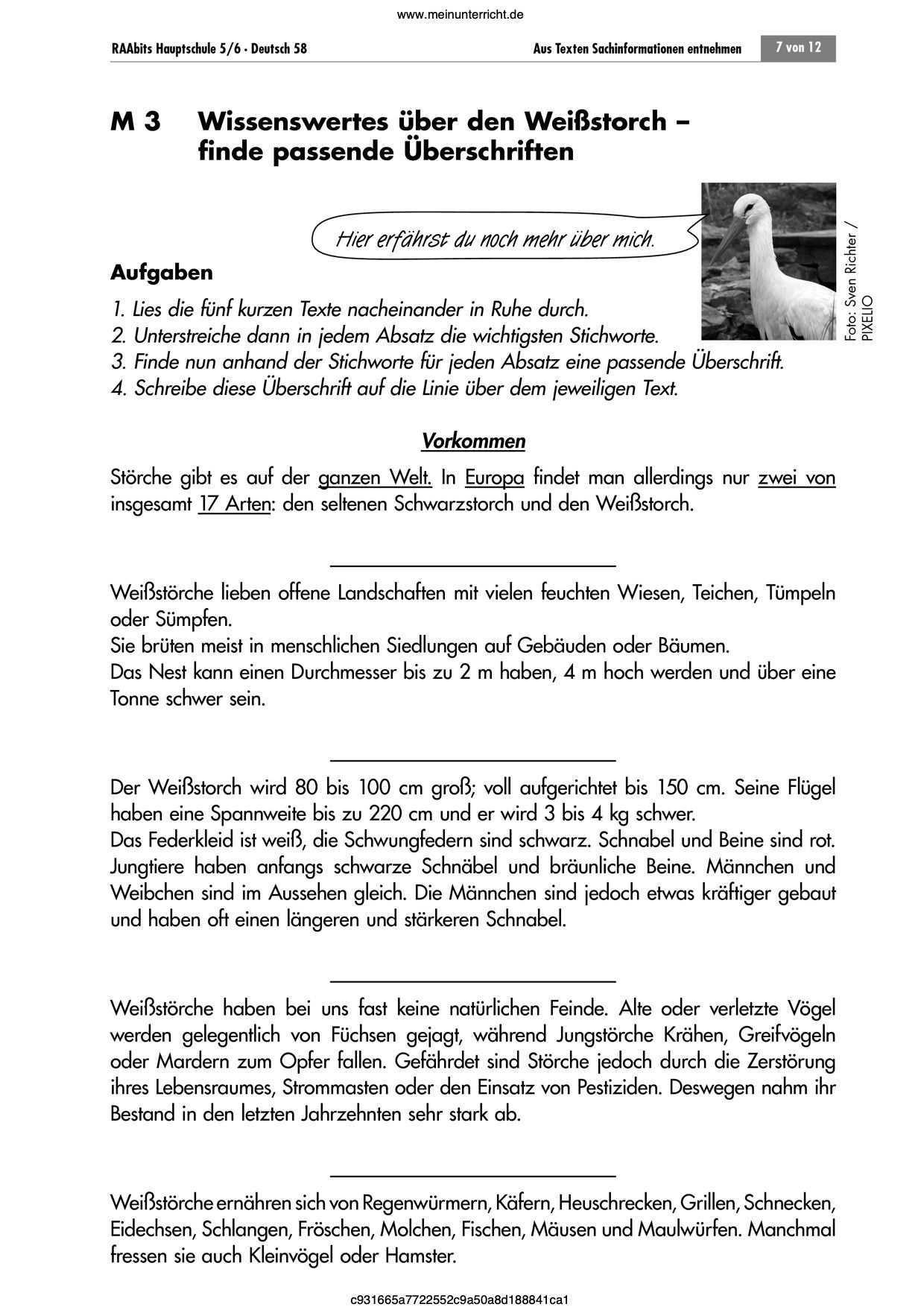 Text Ueber Mich Selbst Beispiel