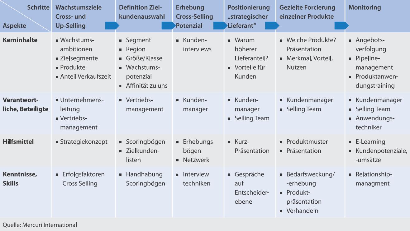 Internationale Vertriebsinitiativen So Wird Die Umsetzung Ein Erfolg Mercuri Germany