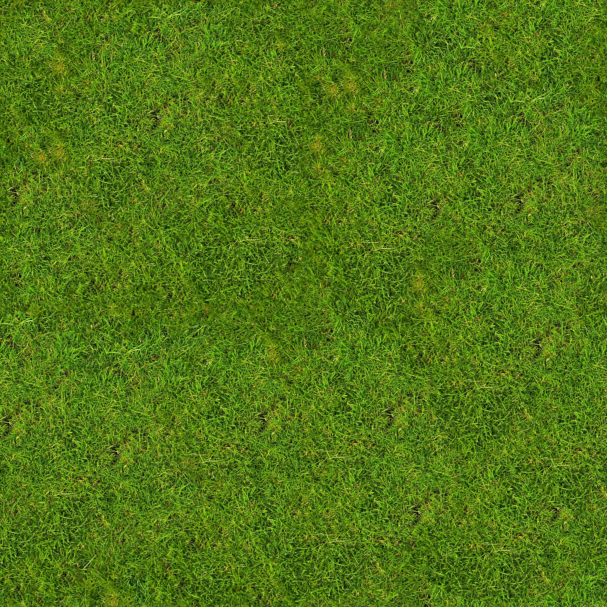 Dark Grass Grasslight Big Png Grass Textures Grass Background Images Wallpapers