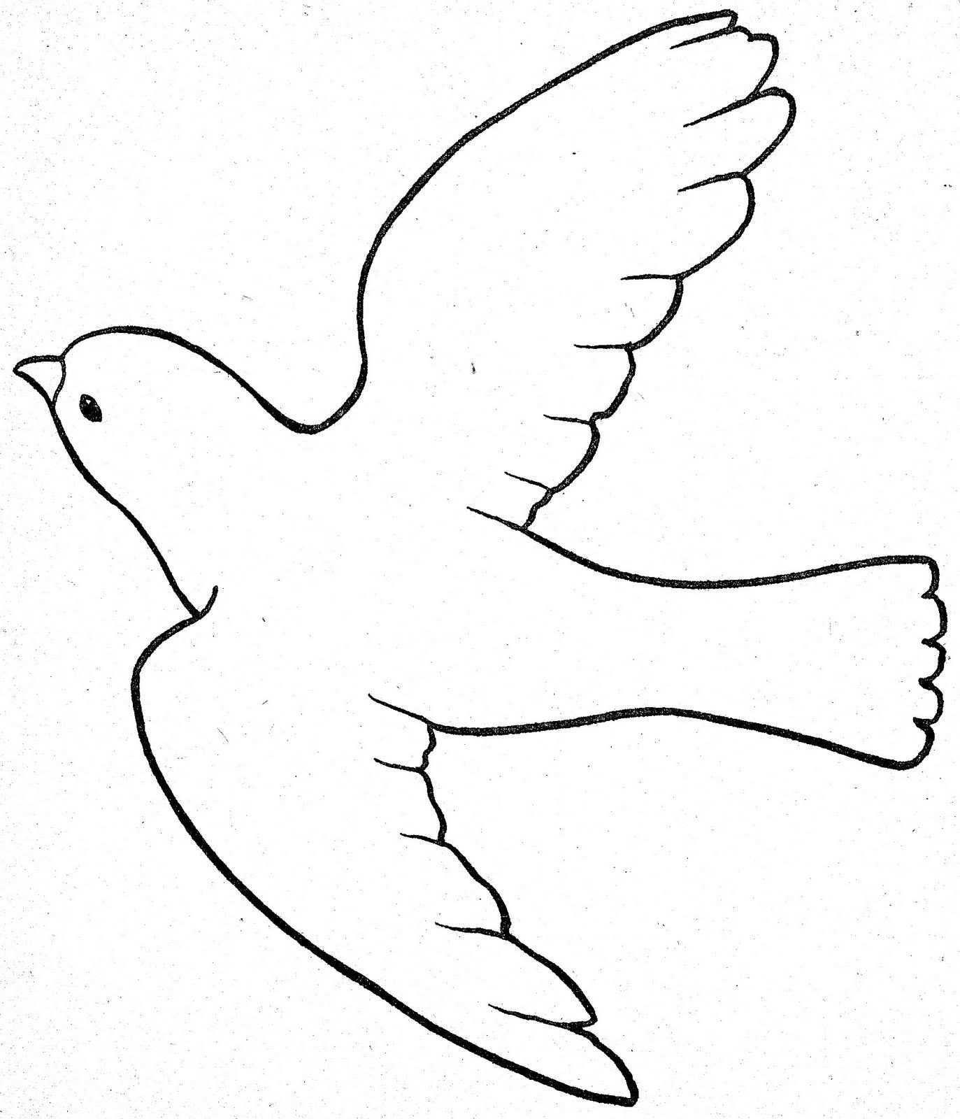 Vogel Vorlage Zum Ausdrucken