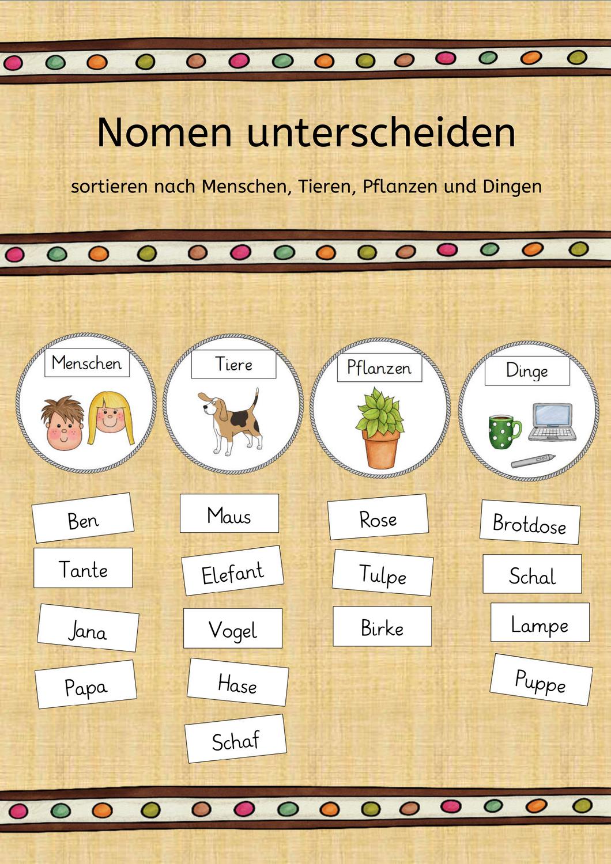 Nomen Unterscheiden Mensch Tier Pflanze Ding Nomen Deutsch Lernen Kinder Daf