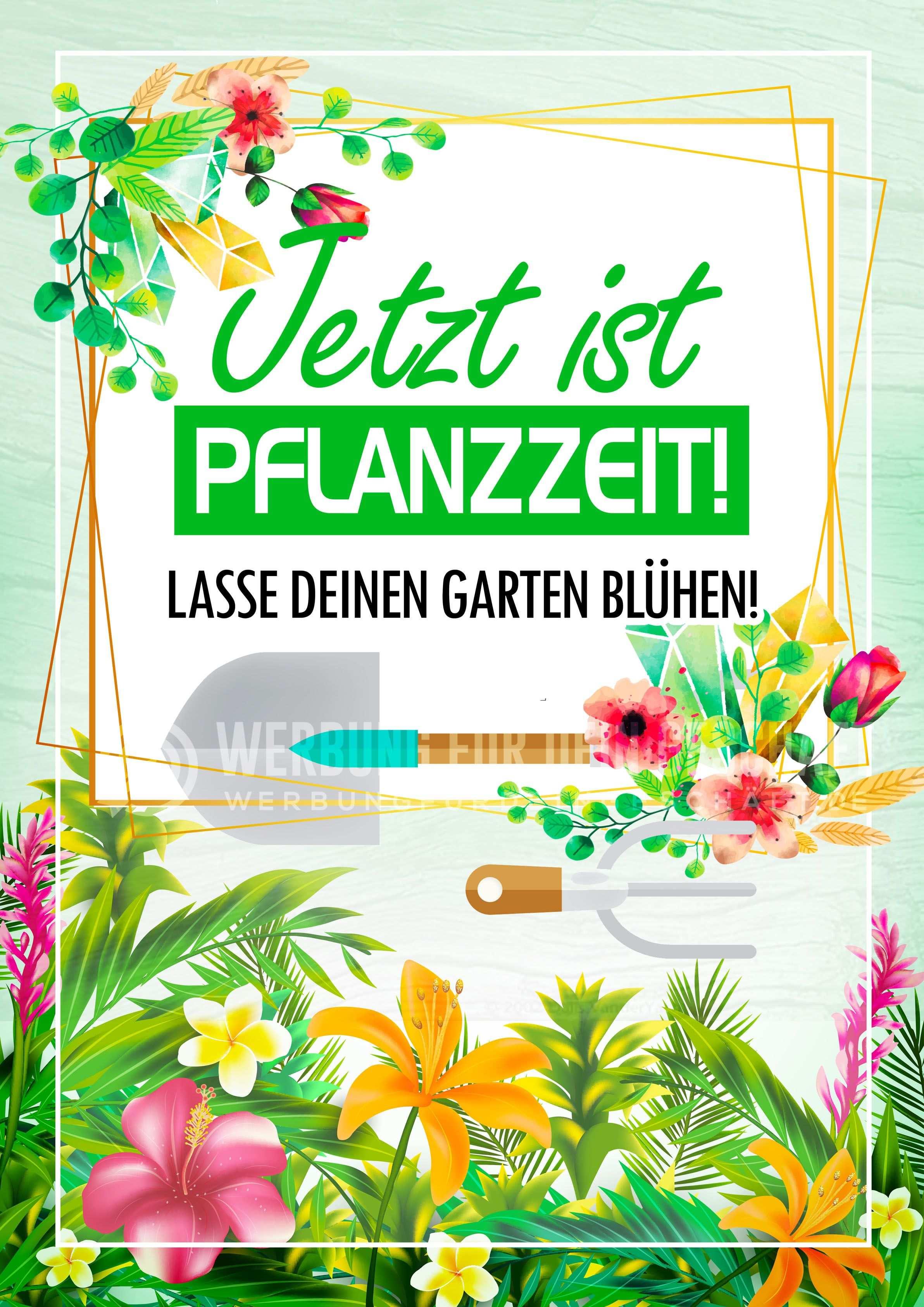 Dieses Poster Jetzt Ist Pflanzzeit Kann Fur Eure Werbung Eingesetzt Werden Als Werbeposter Ist Es Ideal Fur Die Verwendung Fur Pflanzzeit Pflanzen Blumenladen