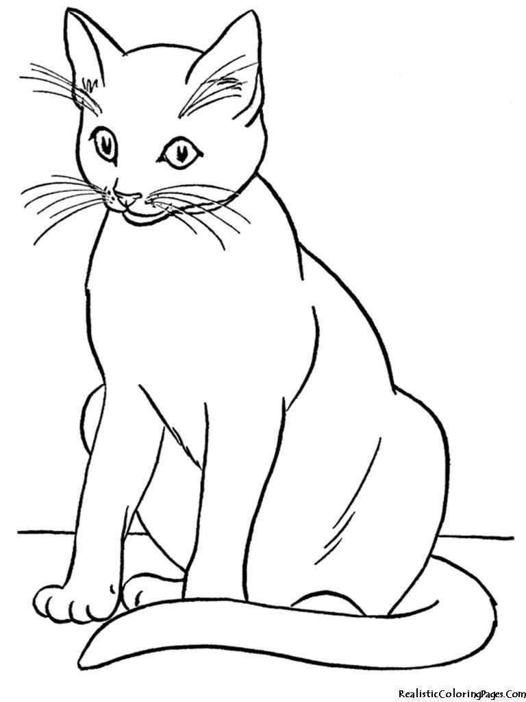 Realistic Cat Coloring Pages Cats In 2020 Cat Coloring Book Kittens Coloring Cat Coloring Page