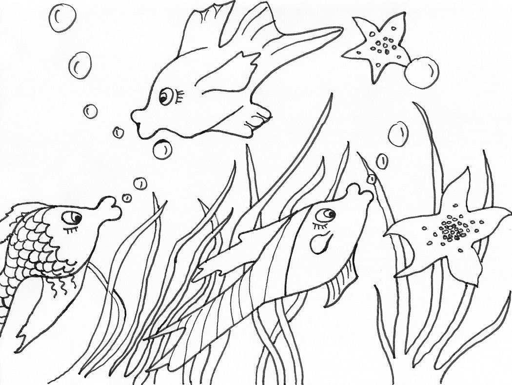 6 Beste Ausmalbilder Fische Gratis Kostenlose Ausmalbilder Malvorlagen Tiere Ausmalbilder Fische