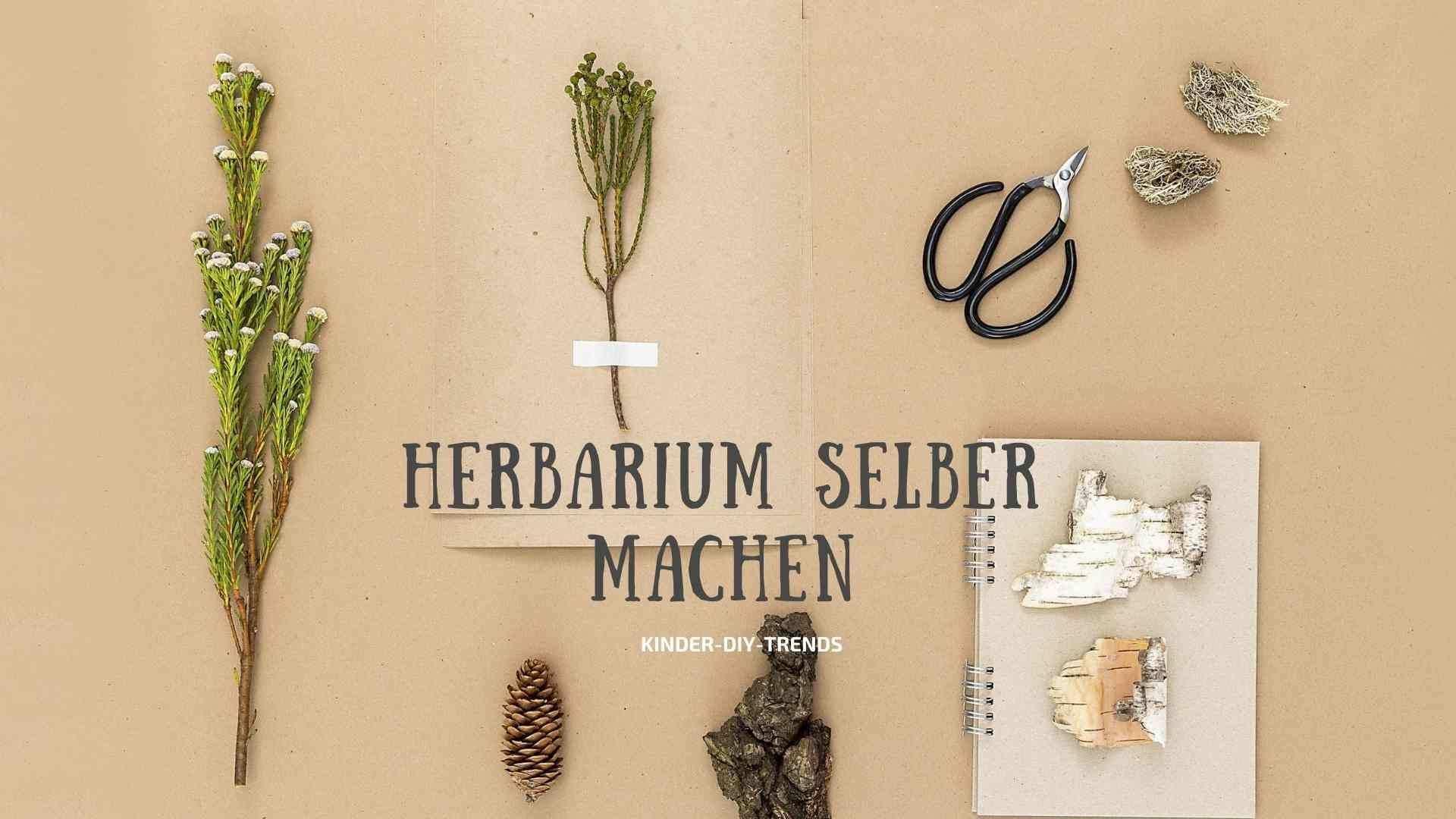 Herbst Bastelideen Fur Kinder Herbarium Vorlage In 2020 Bastelideen Bastelideen Kinder Basteln
