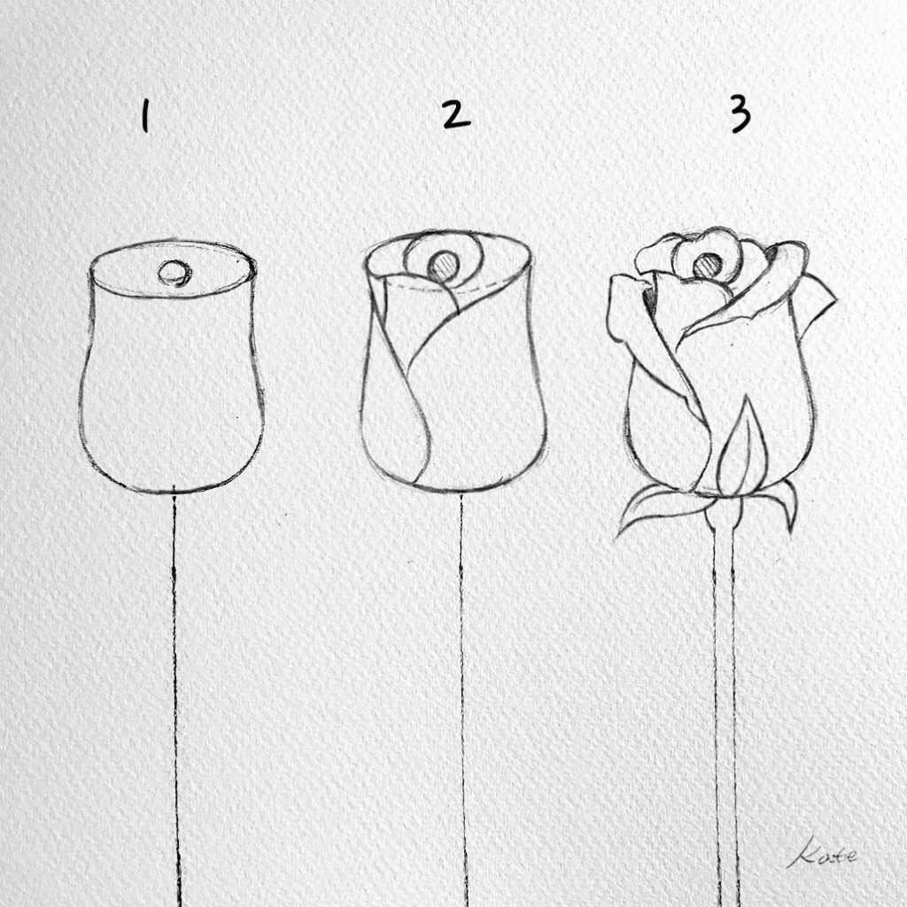 Wie Man Blumen Fur Anfanger In Etappen Zeichnet Anfanger Flowers In 2020 Art Drawings Simple Flower Drawing Cool Art Drawings