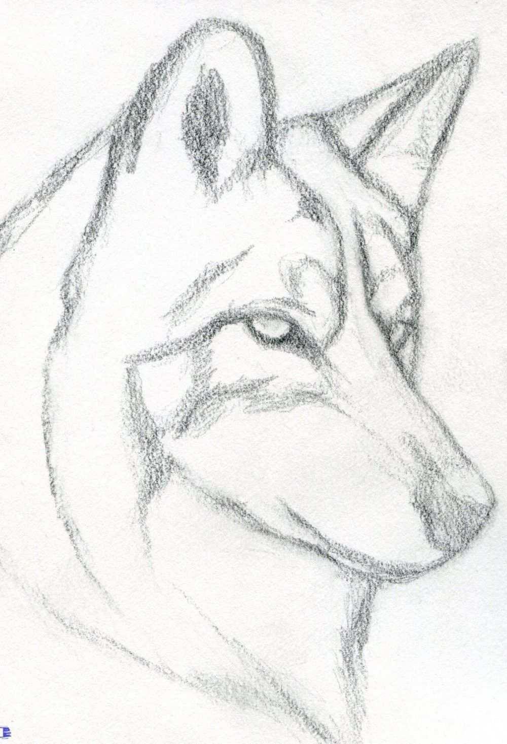 20 Einfache Malanleitungen Fur Anfanger Coole Sachen Zum Schrittweisen Zeichnen Bleistiftzeichnung Malanleitung Zeichnung