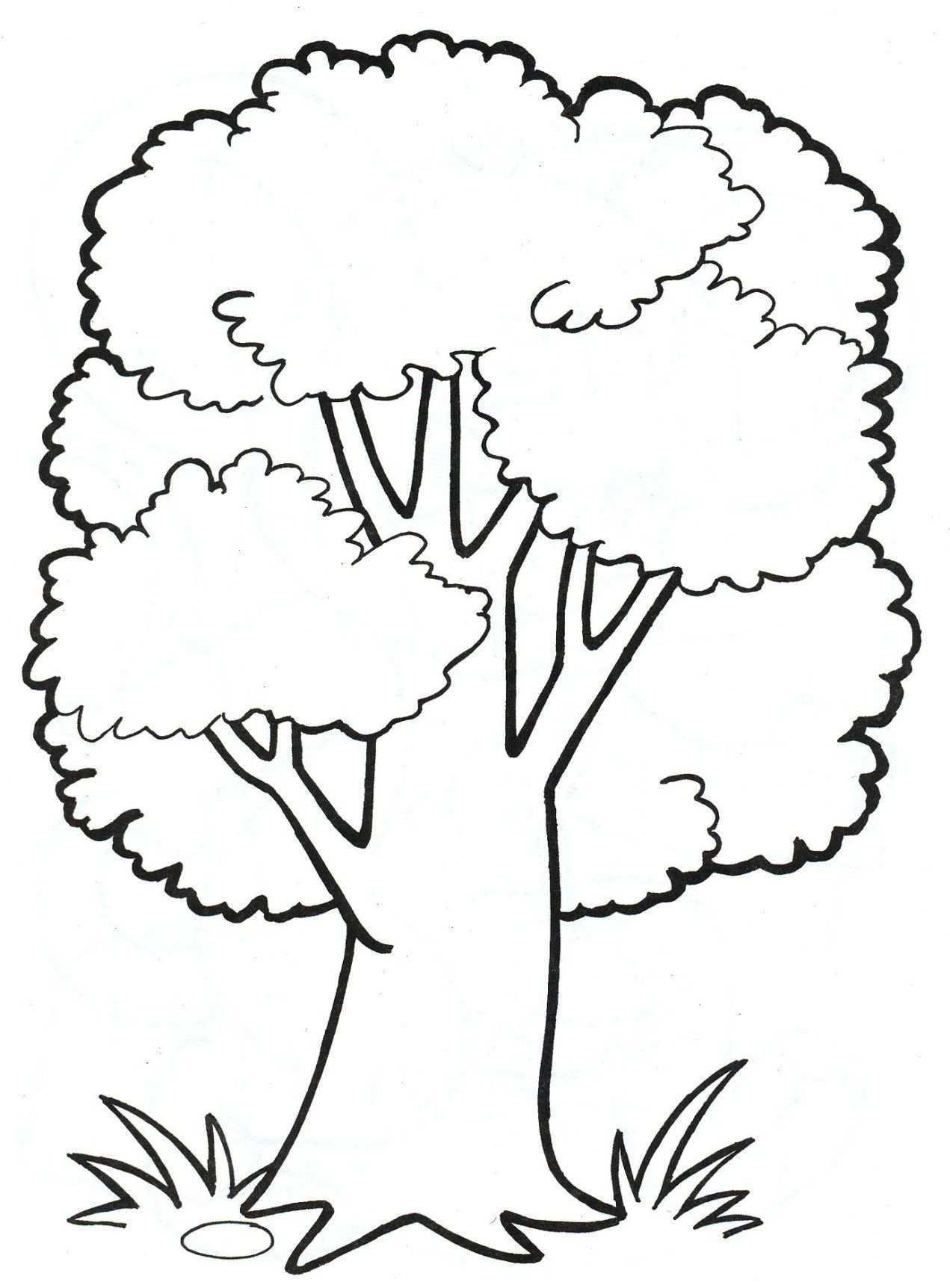 Pin Auf Ausmalbilder Baum