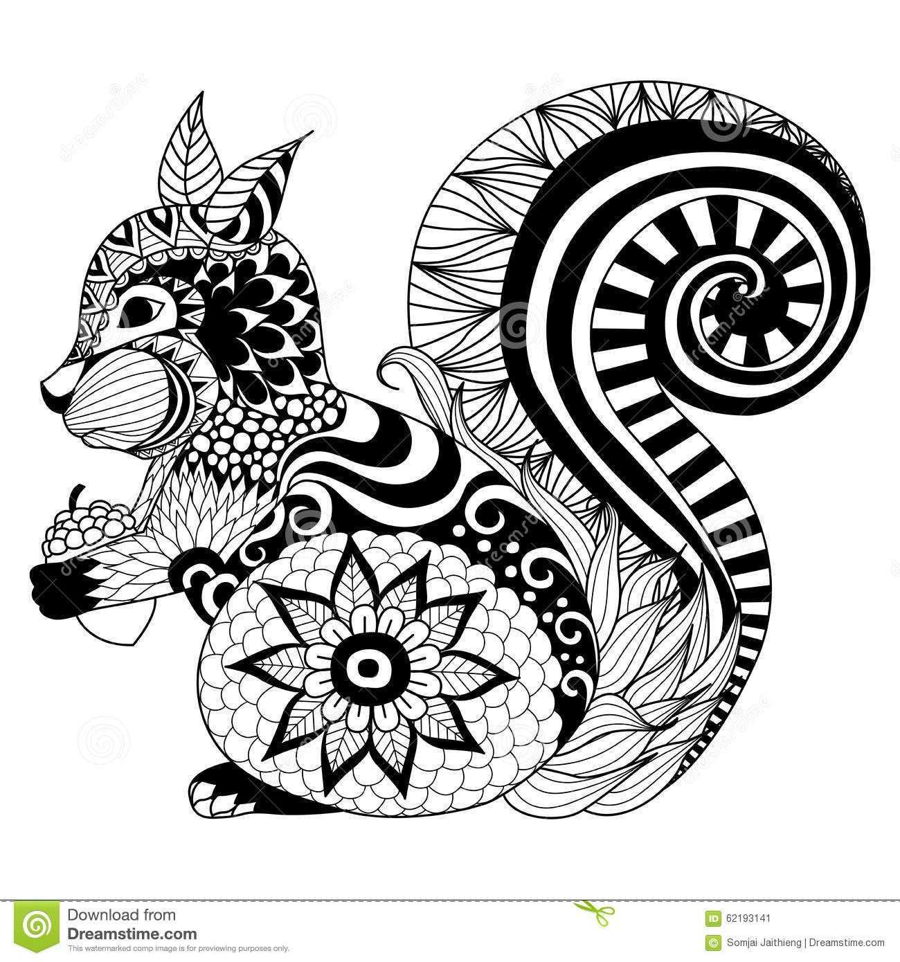 Hand Drawn Squirrel Zentangle Style Coloring Book Tattoo T Shirt Design Logo 62193141 Jpg 1300 1390 Malvorlagen Tiere Zentangle Vorlagen Mandala Ausmalen